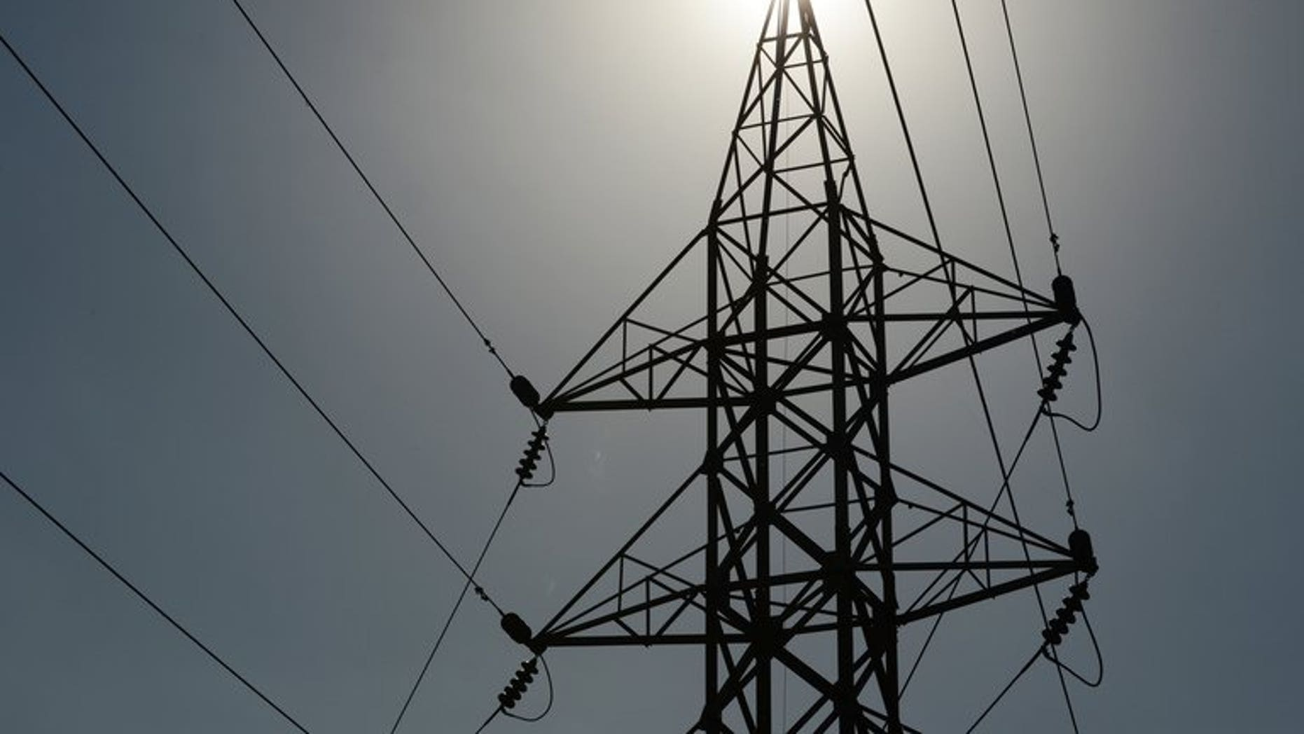 File photo. A Sri Lankan man suffered a fatal heart attack after being presented with a shocking electricity bill, a media report said.