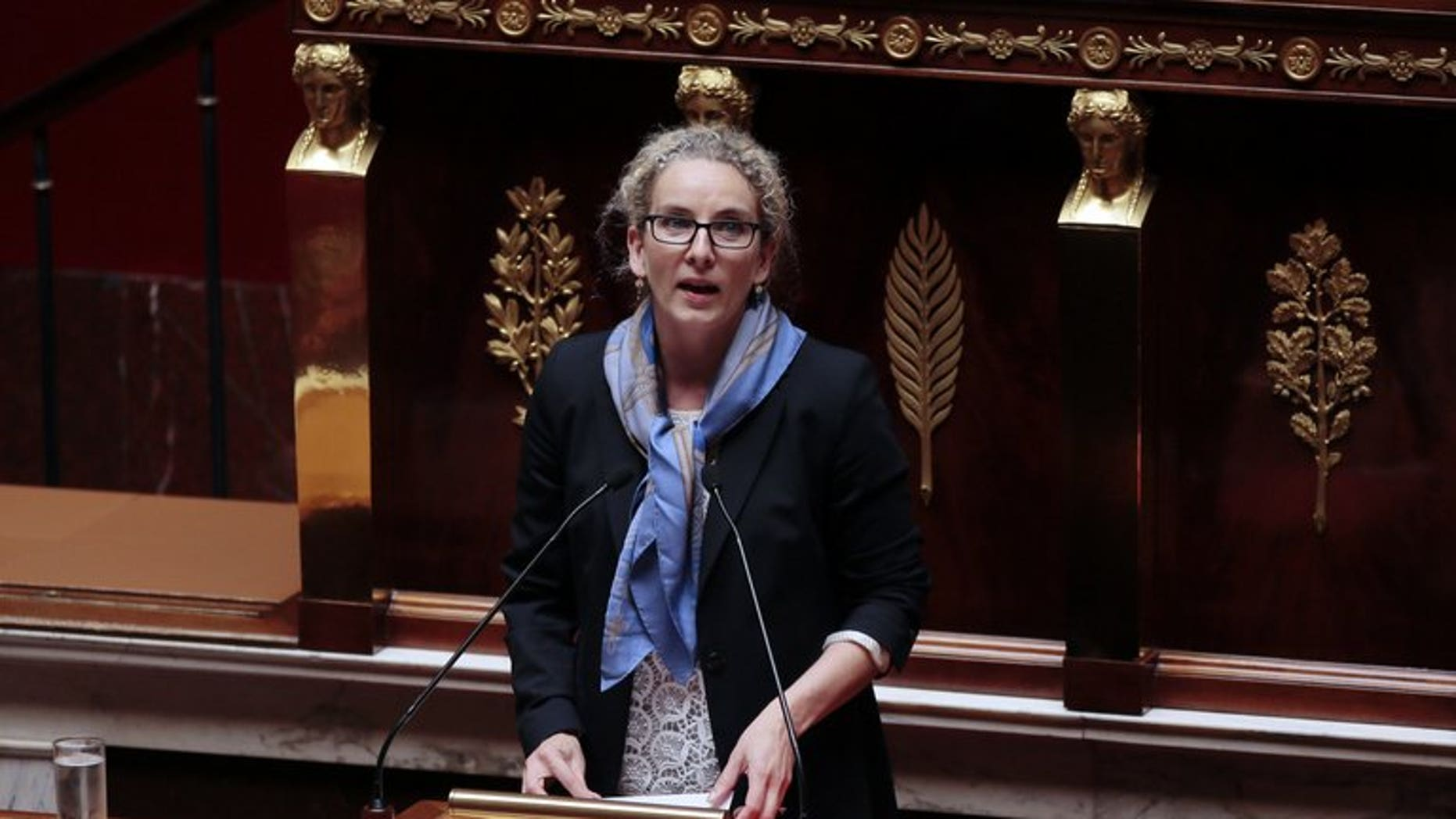 French Environment Minister Delphine Batho speaks at the lectern during a debate on adaptation to European Union law in the field of sustainable development, on July 2, 2013 at the National Assembly in Paris.