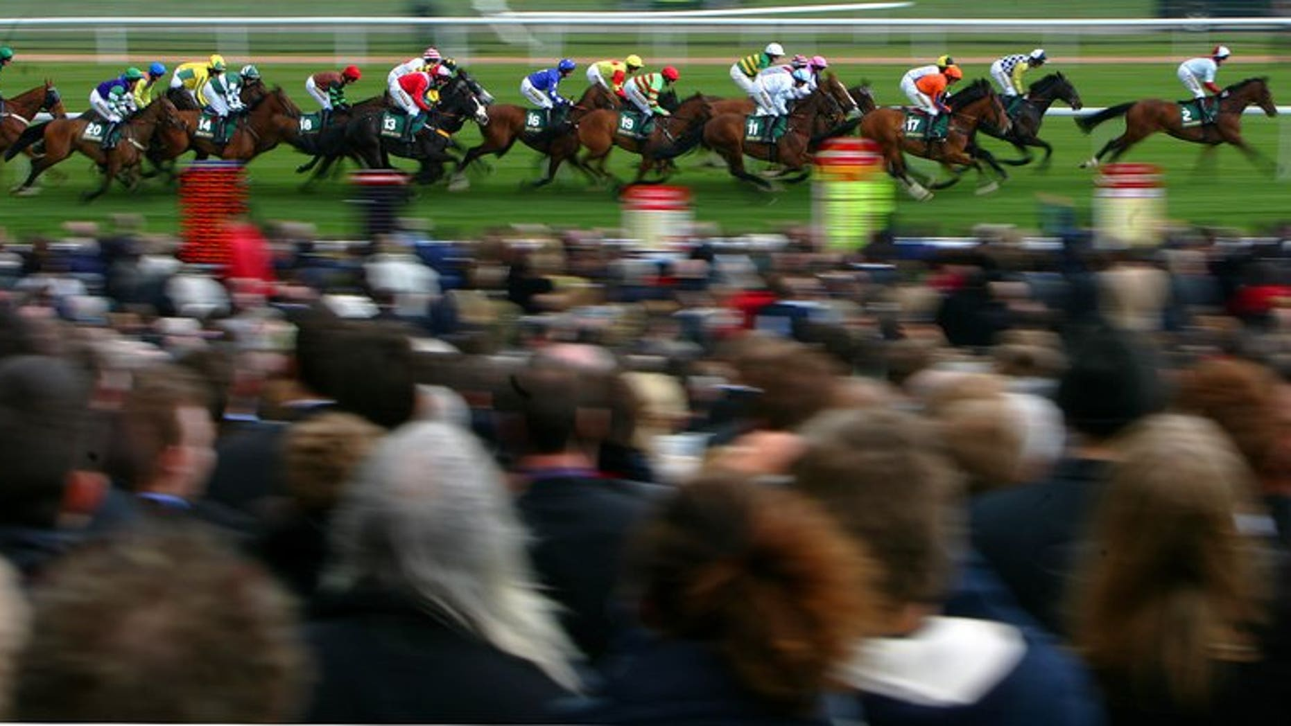 This file photo shows jockeys competing in the Handicap Hurdle race at Aintree racecourse in Liverpool, on April 5, 2008. Jockey Brian Toomey was being treated in hospital on Friday after sustaining life-threatening head injuries during a fall at Perth racecourse in Scotland.
