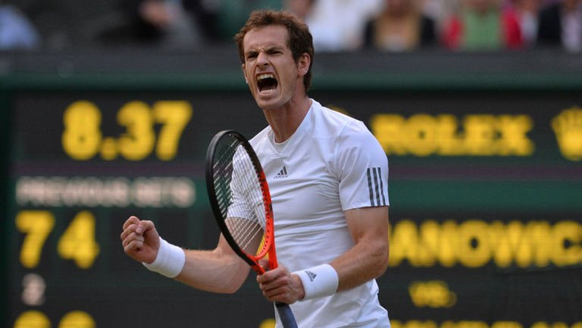 Britain's Andy Murray celebrates winning a point against Poland's Jerzy Janowicz in their men's singles semi-final match at the All England Club in Wimbledon, southwest London, on July 5, 2013. Murray took a two sets to one lead in his Wimbledon semi-final against Janowicz on Friday when he took the third set, 6-4.