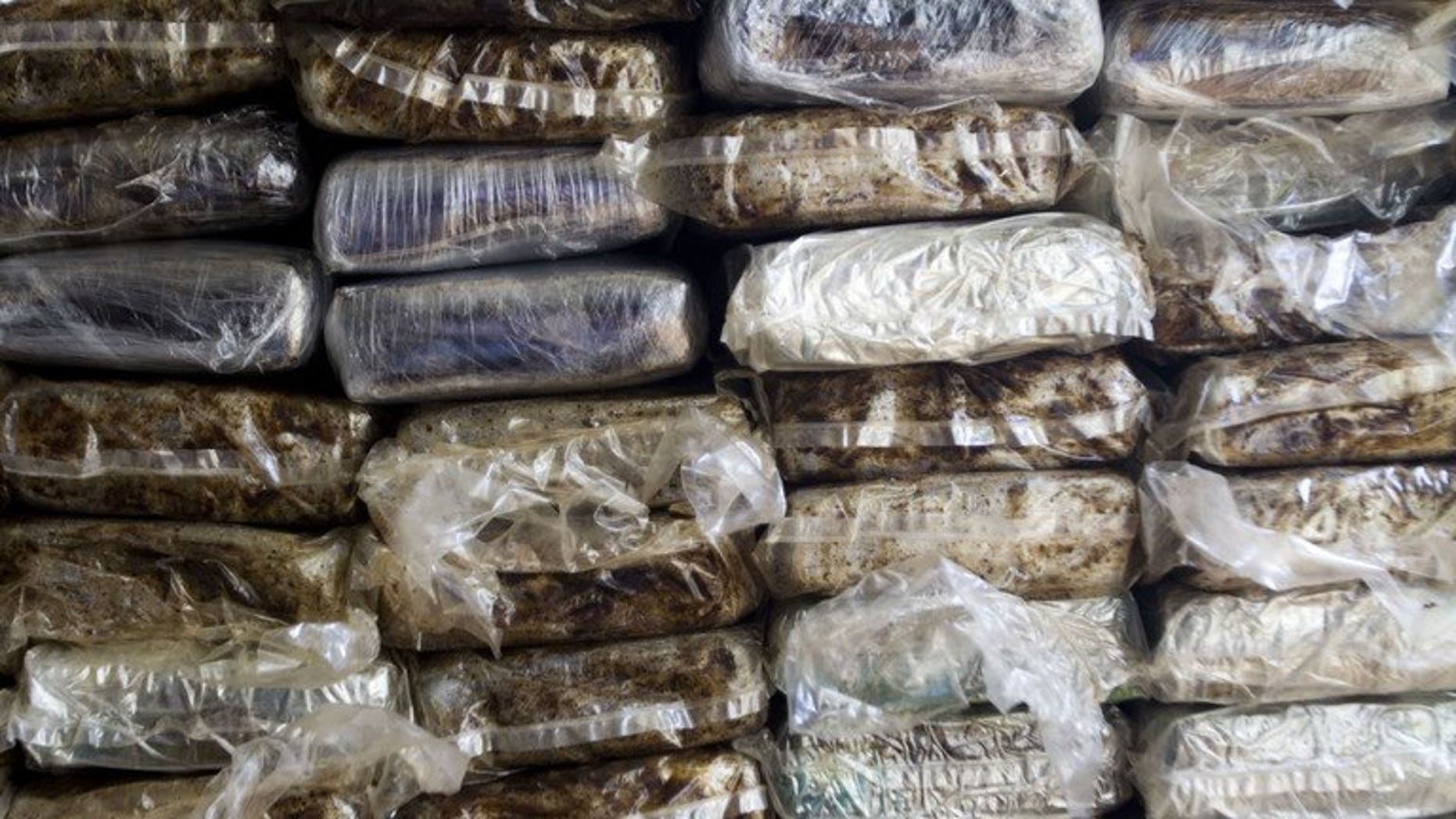 Pakistani and Belgian authorities have seized cocaine and hashish worth more than $76 million in a series of drug raids in which three foreigners were arrested, Islamabad said Friday.