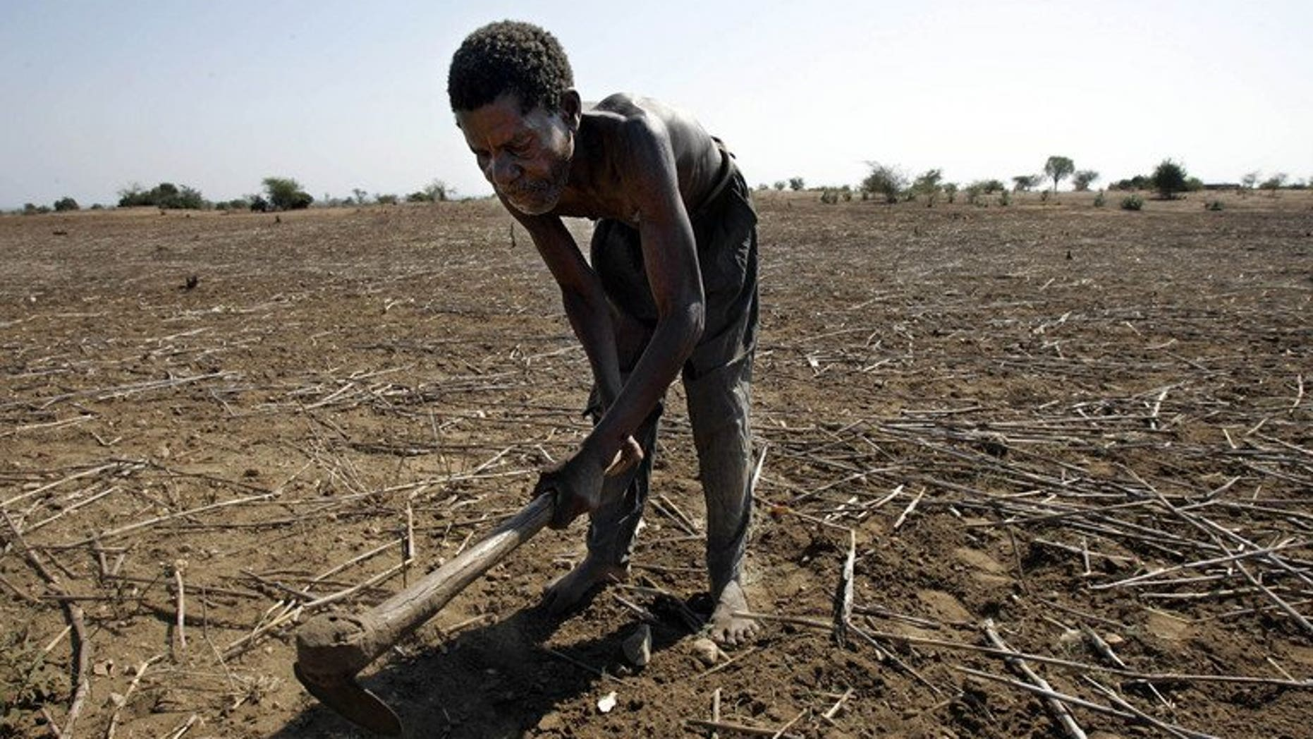 A Malawian farmer works on his land in Nsanje district on 12 October 2005. Nearly 10 percent of Malawi's 13 million people face hunger due of low yields of the main staple maize, prolonged dry spells and flooding, a report has said.