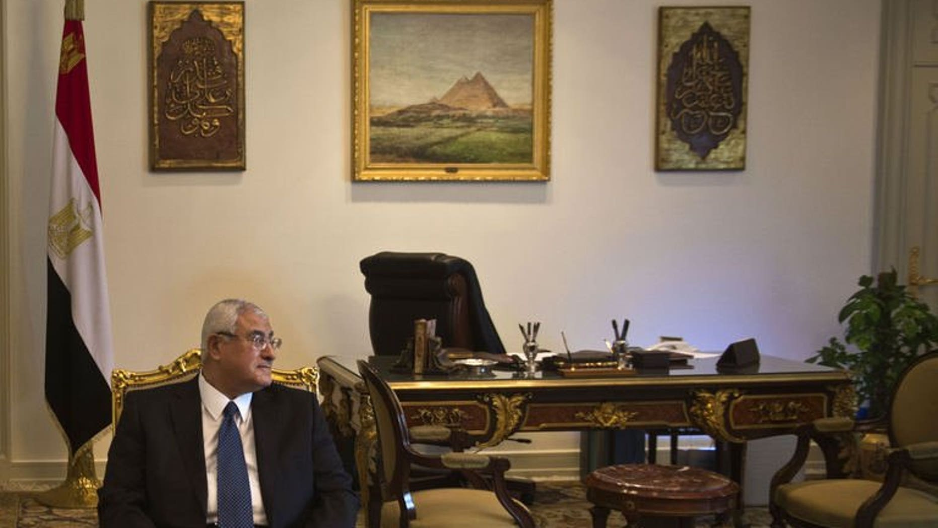 Egypt's interim president Adly Mansour, pictured in Cairo on July 15, 2013, appointed a committee of experts to amend the constitution that was suspended following the military's overthrow of president Mohamed Morsi, the presidency said.