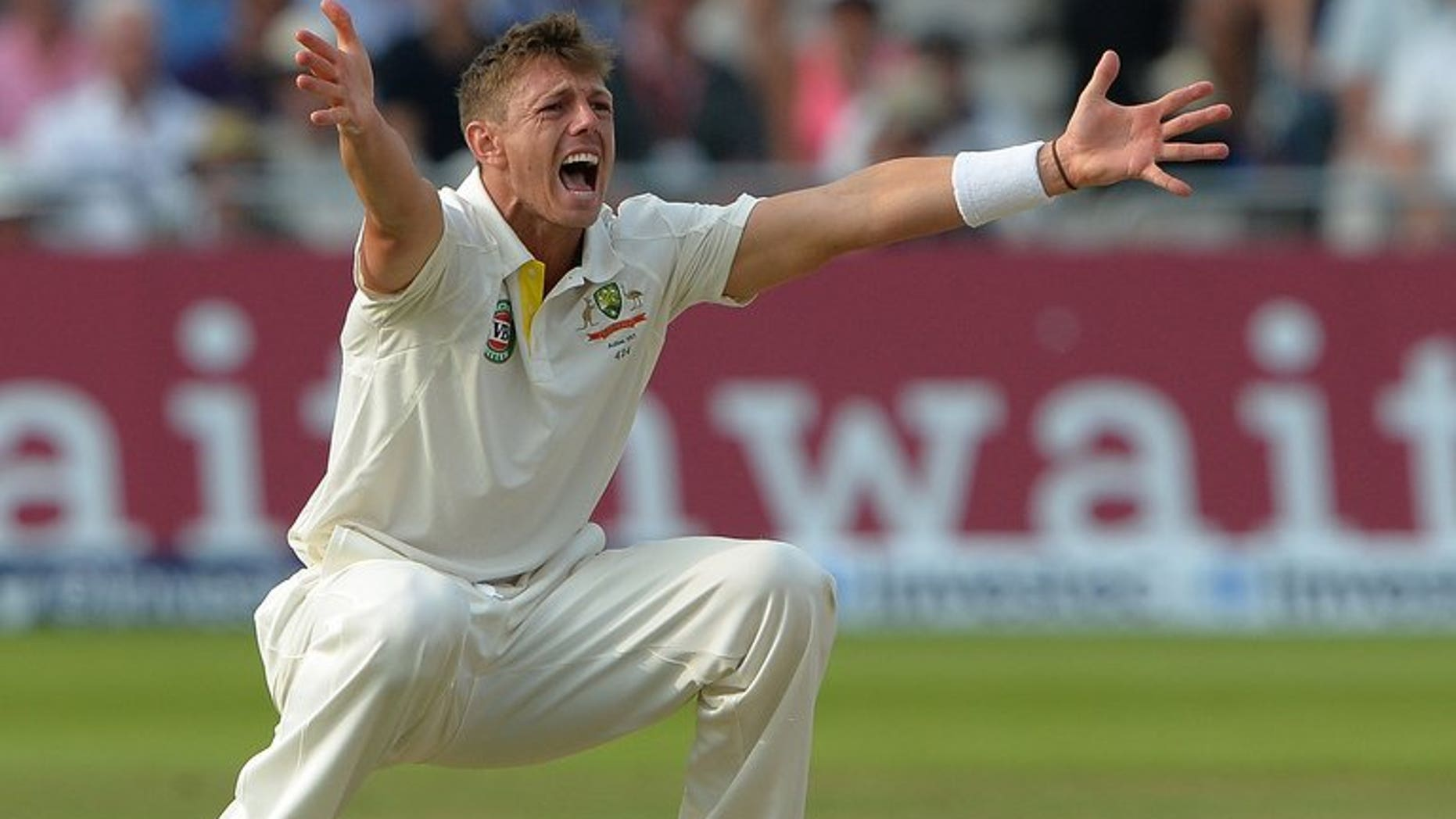 Australia's James Pattinson appeals in vain for a wicket at Trent Bridge in Nottingham, central England, on July 12, 2013.