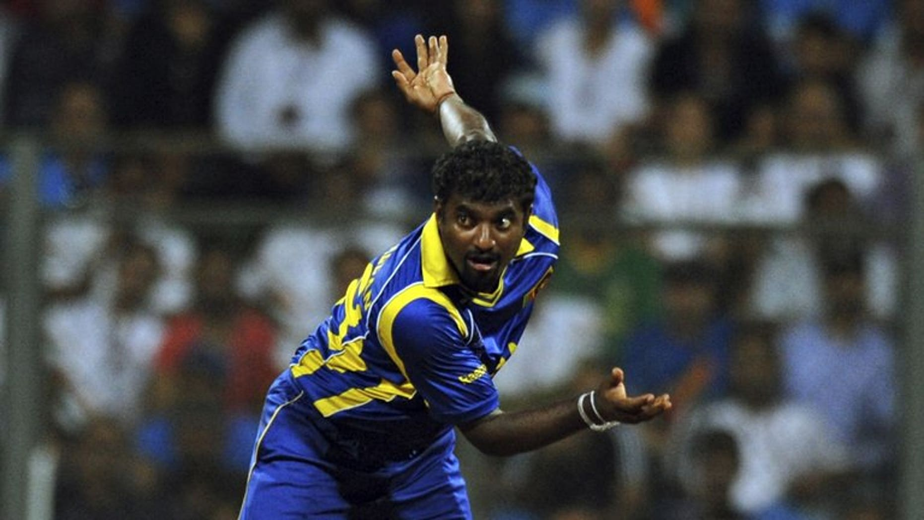 Muttiah Muralitharan, pictured during the ICC Cricket World Cup final between India and Sri Lanka, at Wankhede Stadium in Mumbai, on April 2, 2011. Muralitharan on Tuesday re-signed for the Australian Big Bash League with the Melbourne Renegades, who also unveiled Test quicks Peter Siddle and James Pattinson as part of their team.