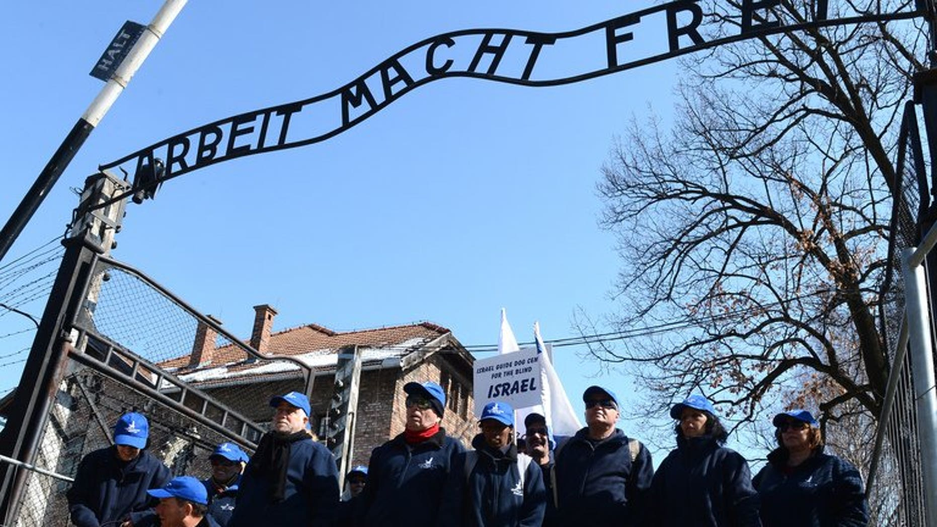 """Members of the """"Israeli Guide Dog Center for the Blind"""" participate in the annual """"March of the Living"""" at Auschwitz-Birkenau concentration camp, April 8, 2013 to commemorate the victims of the Holocaust . The Nazi-hunting Simon Wiesenthal Center hung posters on the streets of major German cities Tuesday seeking information on the last perpetrators of the Holocaust still at large nearly 70yrs on."""