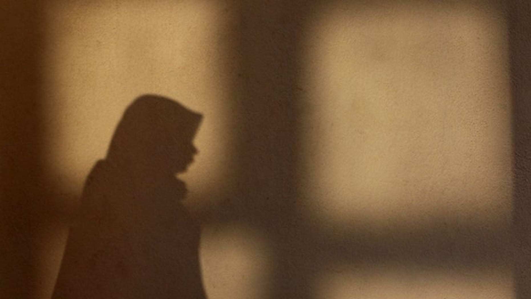 The shadow of a Malaysian woman as she prays during Eid al-Fitr at a mosque in Kuala Lumpur, on August 19, 2012. Malaysian police have arrested a woman who angered Muslims by posting a video greeting for the Eid al-Fitr holiday that featured her dogs, her lawyer said.
