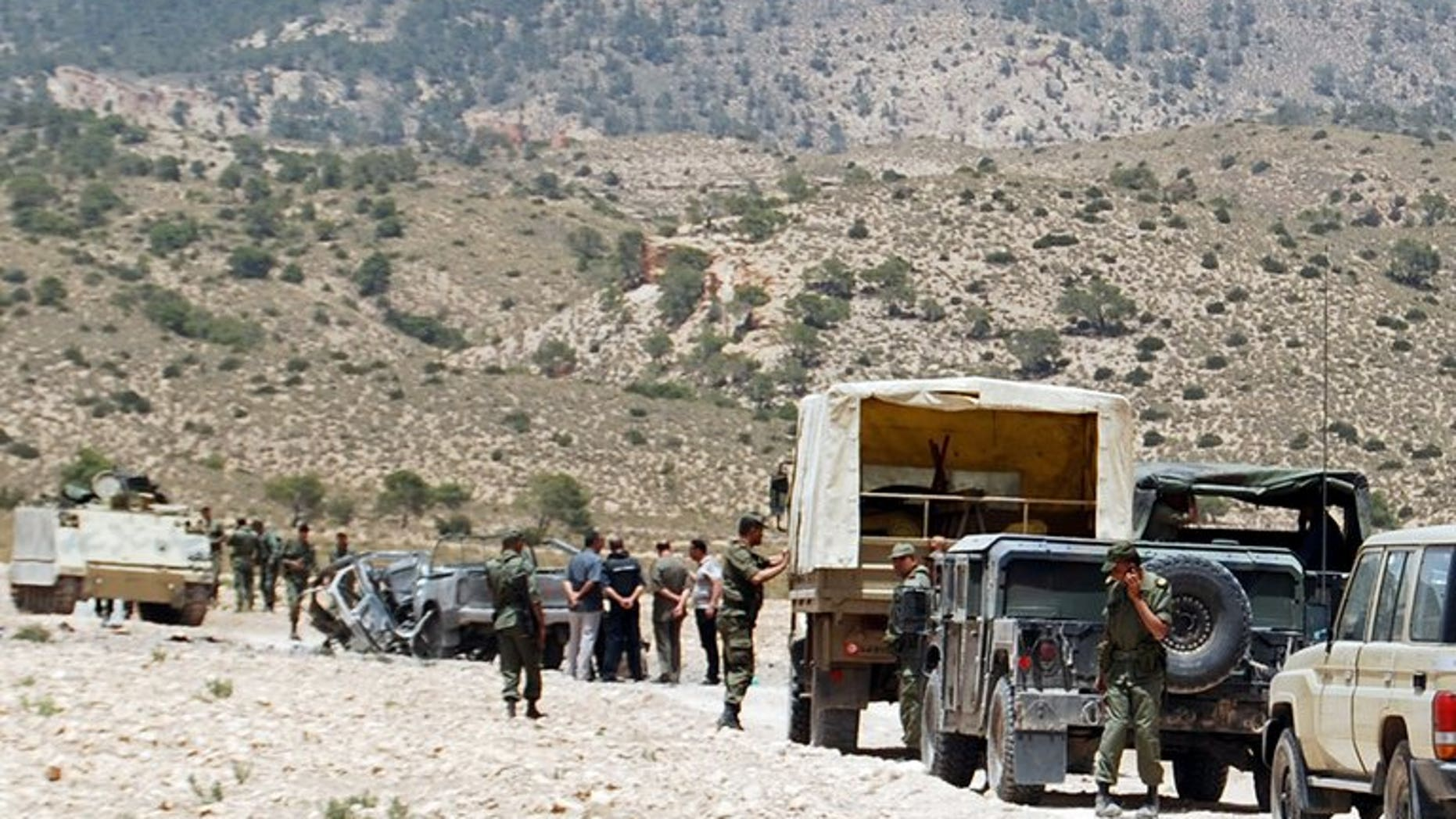 The Tunisian army stands guard in the mountainous border region near Algeria on June 6, 2013. Tunisia's army on Monday bombarded suspected jihadist positions in a rugged mountain range near the Algerian border, as it kept up operations against Islamists following a deadly ambush on troops.