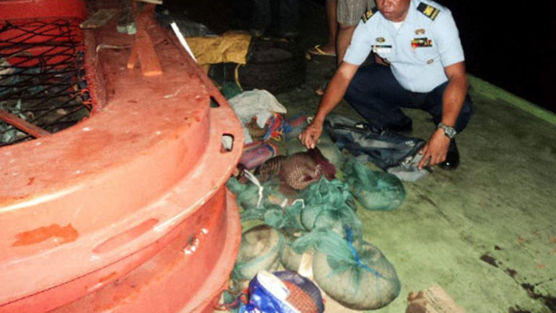 A Philippine Coast Guard inspects pangolins wrapped in plastic bags that were found hidden on a boat in Coron, on April 23, 2013. Vietnamese customs officials say they have found more than six tonnes of live protected pangolins inside a shipping container sent from Indonesia.