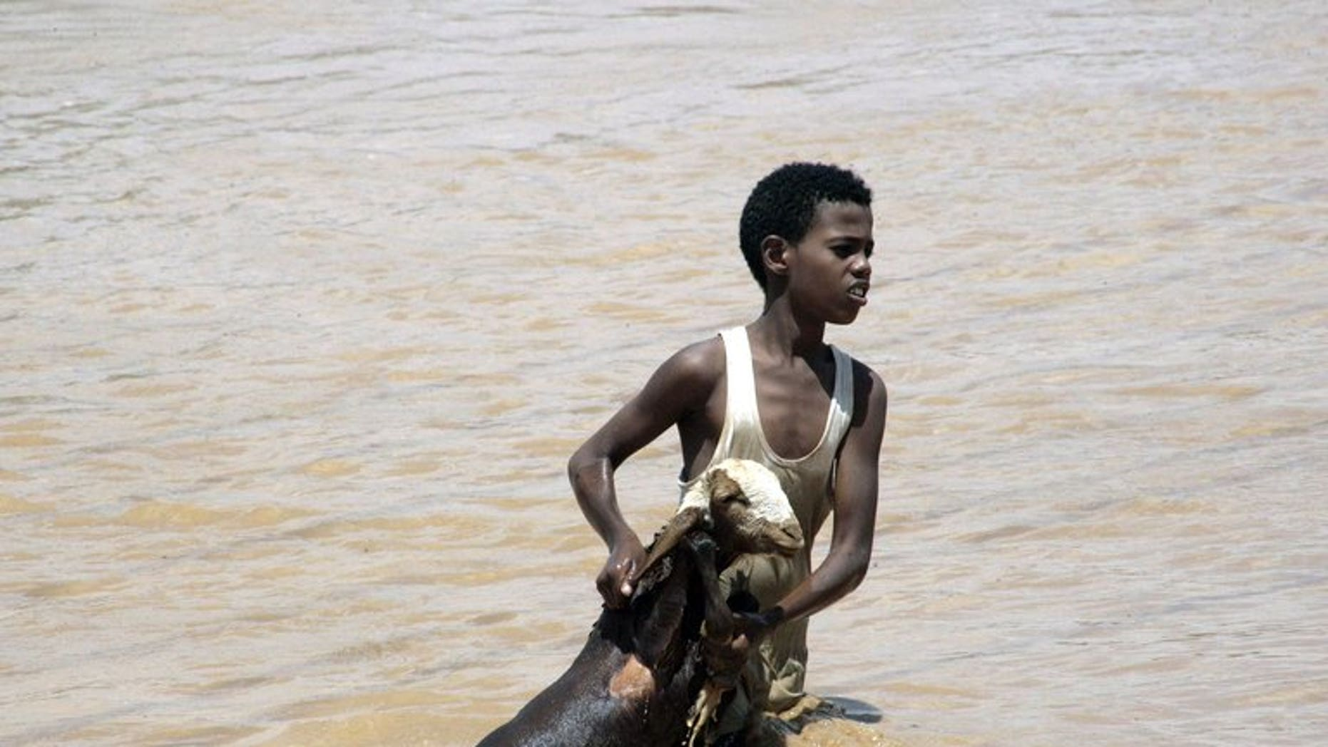 A boy holds a goat out of flood waters as he makes his way to higher land on August 3 in Khartoum. More flooding is expected in Sudan, the country's chief weather forecaster warned on Thursday, after severe rains have killed 53 people and affected about 200,000.