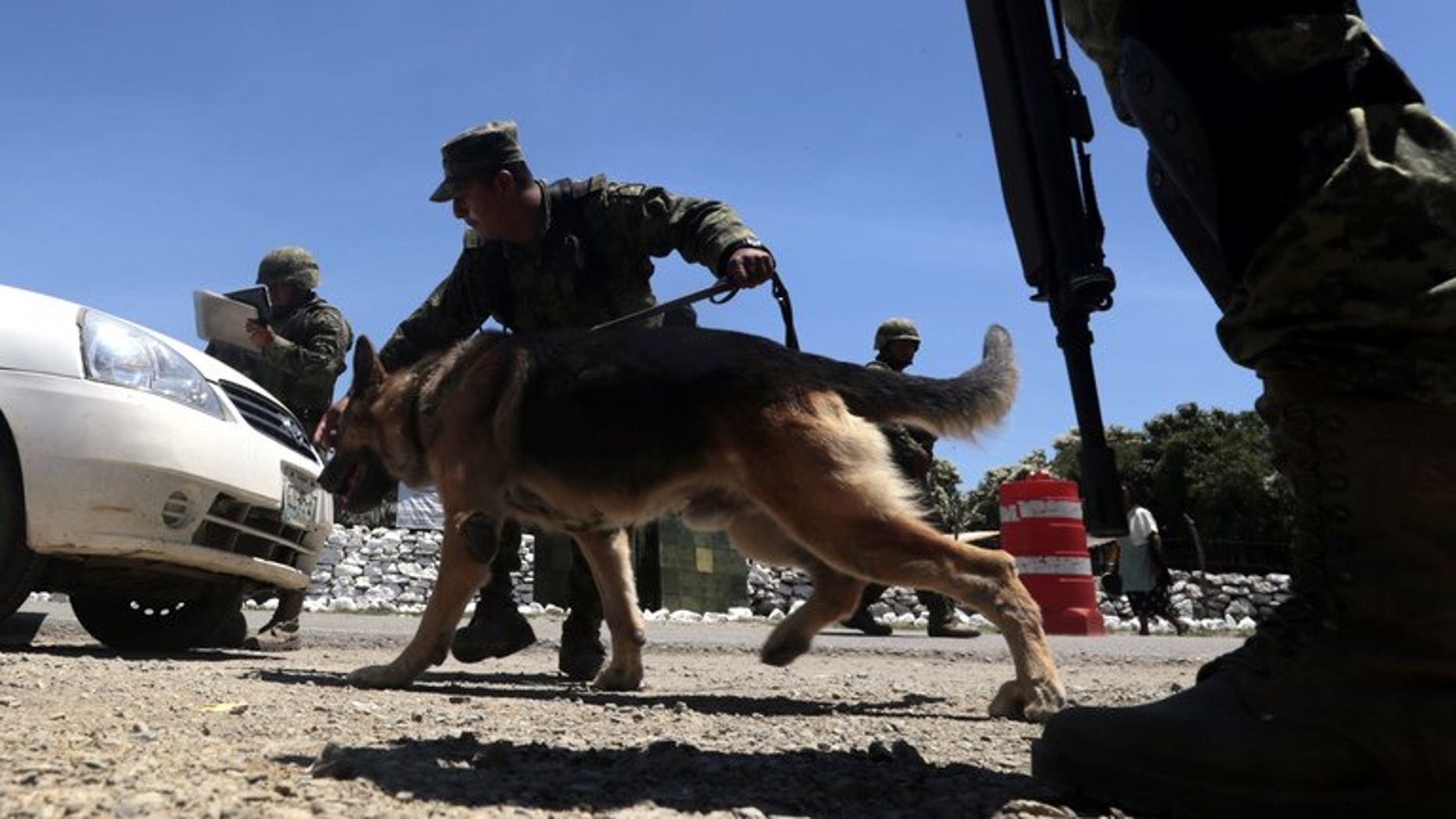 A member of the Mexican Army inspects a vehicle at a checkpoint on the road to Tlacotepec in Eduardo Neri municipality, Mexico, on August 2, 2013. The Mexican government announced Saturday that Mario Ramirez Trevino, leader of the Gulf drug cartel in the north of the country, and wanted in the United States, had been arrested.