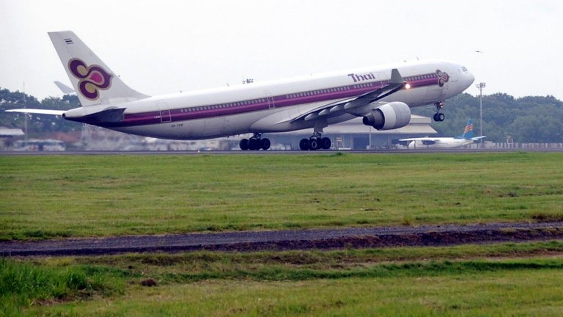 A Thai Airways plane prepares to take off at Ngurah Rai airport in Denpasar on January 27, 2010. On Monday one of the airline's planes skidded off the runway at Bangkok Airport.