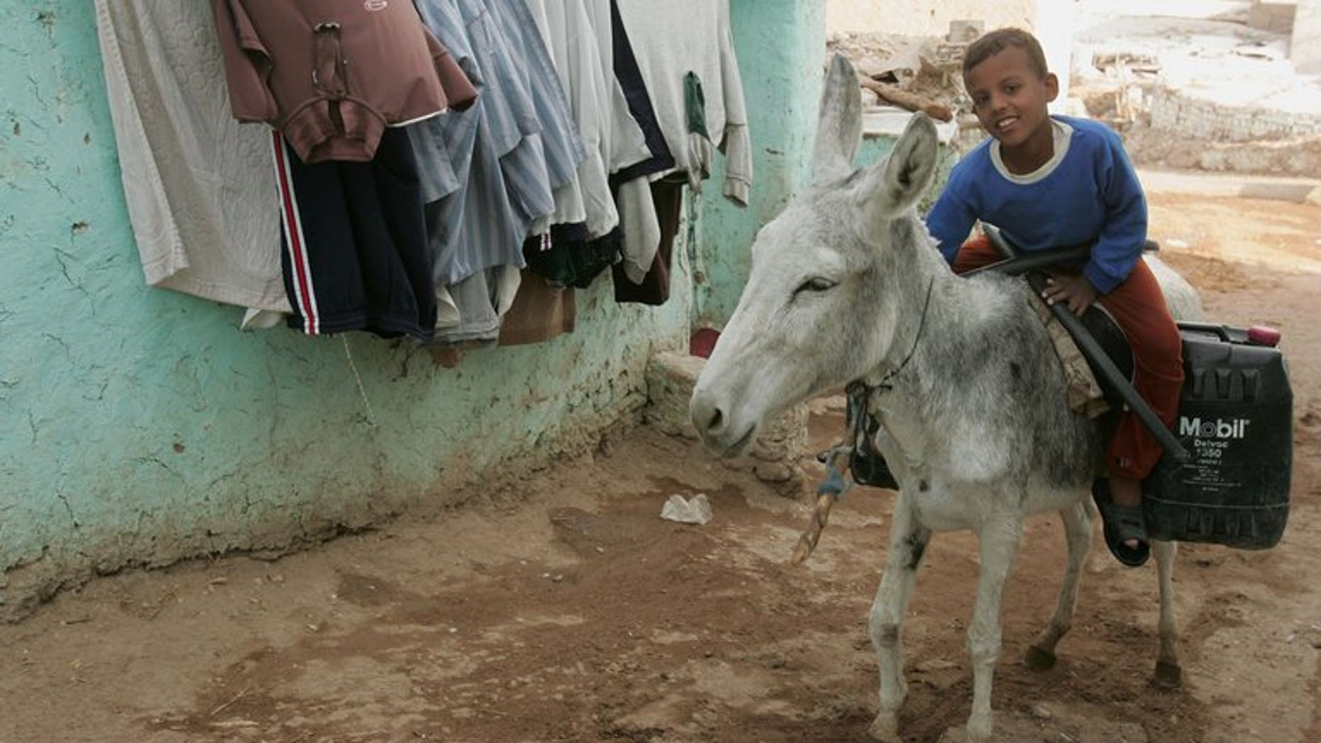 An Egyptian boy on a donkey goes up a street in the town of al-Qurna on December 01, 2006.
