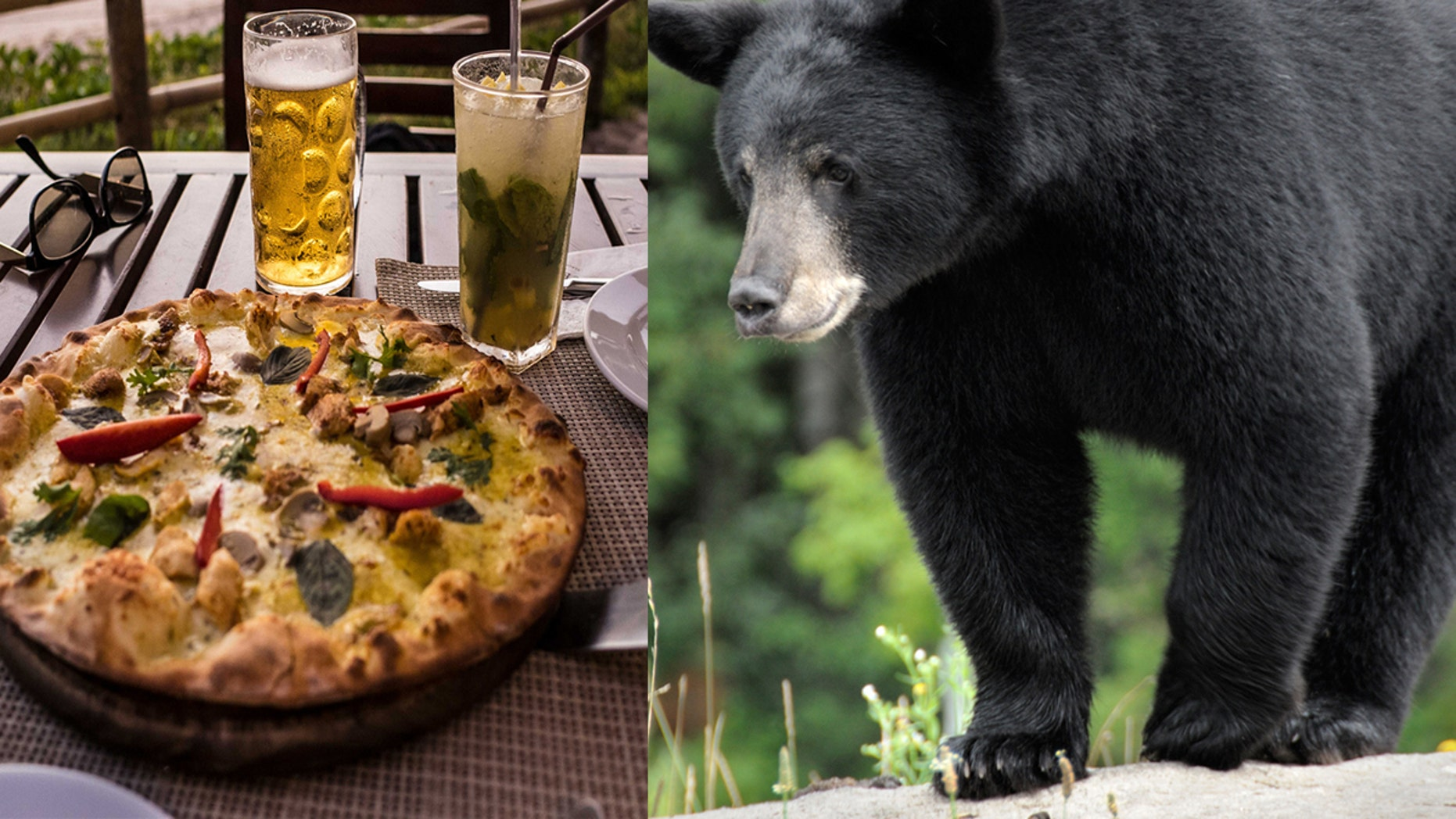 Carolyn Ball, a waitress at Howard's Steakhouse in downtown Gatlinburg, said a young black bear cub came up from the creek near the restaurant and helped himself to a customer's pizza.