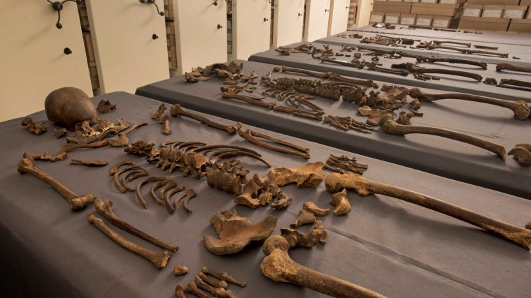 Five skeletons found to contain 1665 Great Plague bacteria (Crossrail).
