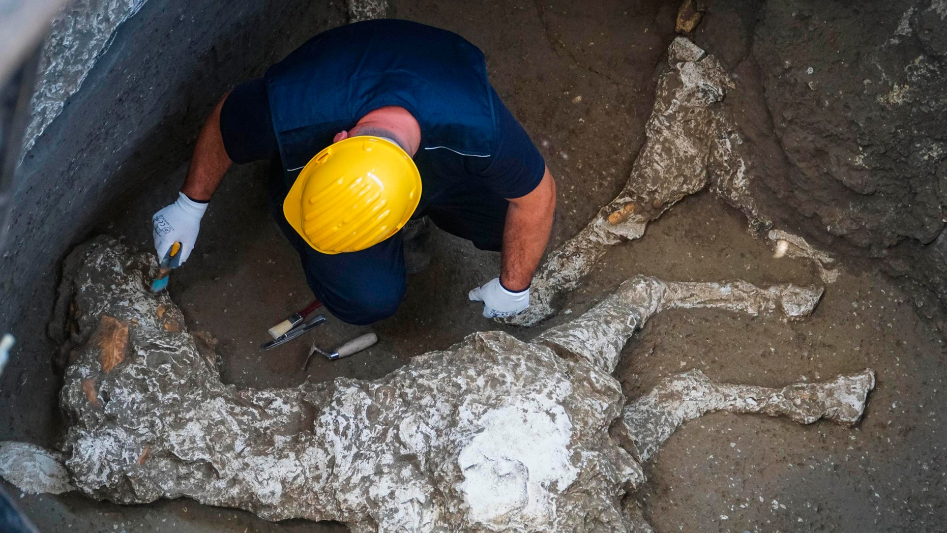 In this picture taken Thursday, May 10, 2018, an archaeologist works near the remains of a horse found in the stable of a Pompeii villa, near Naples, Southern Italy. (Cesare Abbate/ANSA via AP)