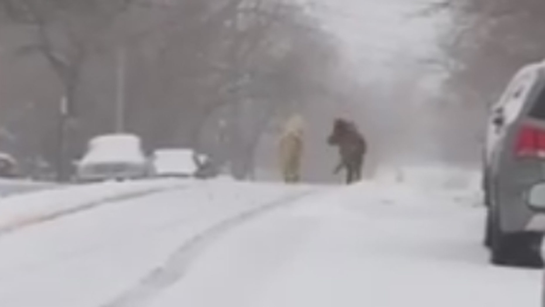 Ponies running in the snow in Staten Island, NY.