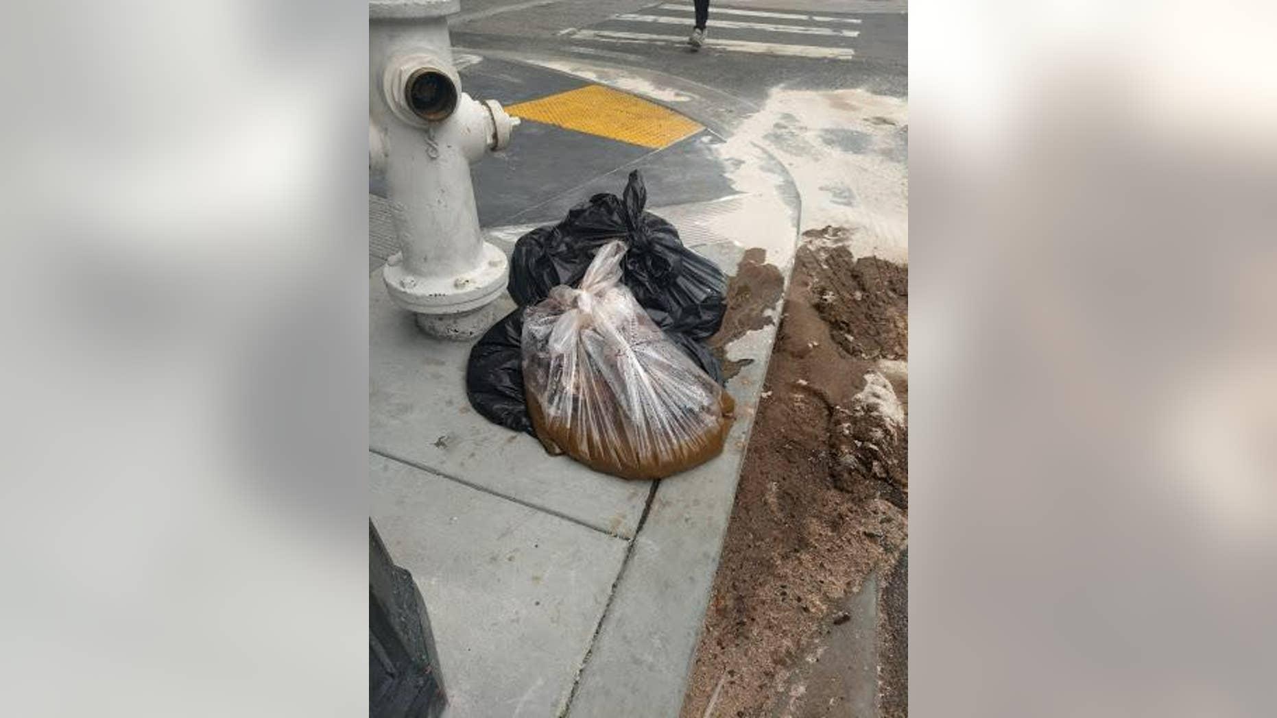 """""""Twenty pounds of feces"""" were dumped on San Francisco sidewalk on Saturday."""