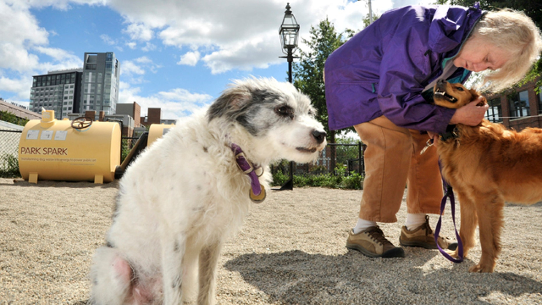 """Louisa Solano of Cambridge, Mass., hugs a dog while she and her dog Macedo, left, visit a dog park in Cambridge. Boston artist Matthew Mazzotta devised the """"Park Spark,"""" background left, which powers a connected gas light with the methane gas given off by droppings collected at the park."""