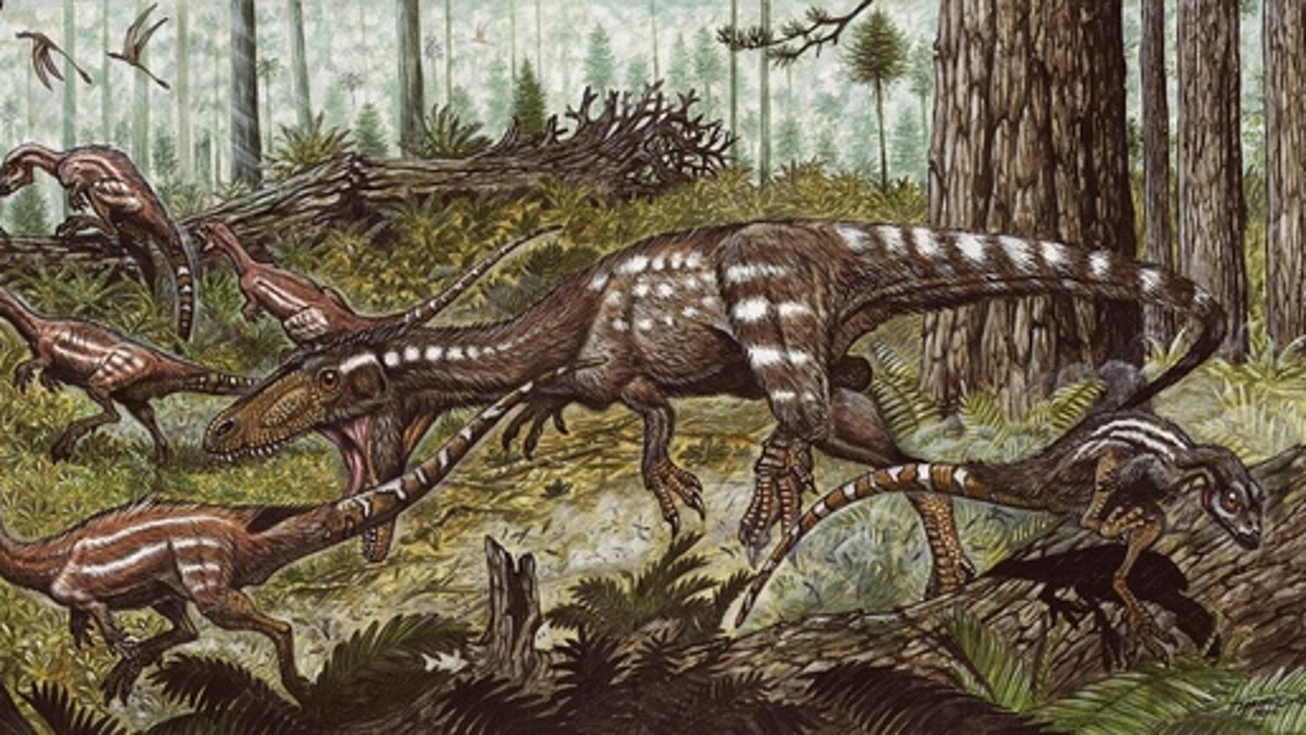 The predatory dinosaur <em>Tachiraptor admirabilis</em>, unearthed in Venezuela, attacking the herbivorous dinosaur <em>Laquintasaura</em>.