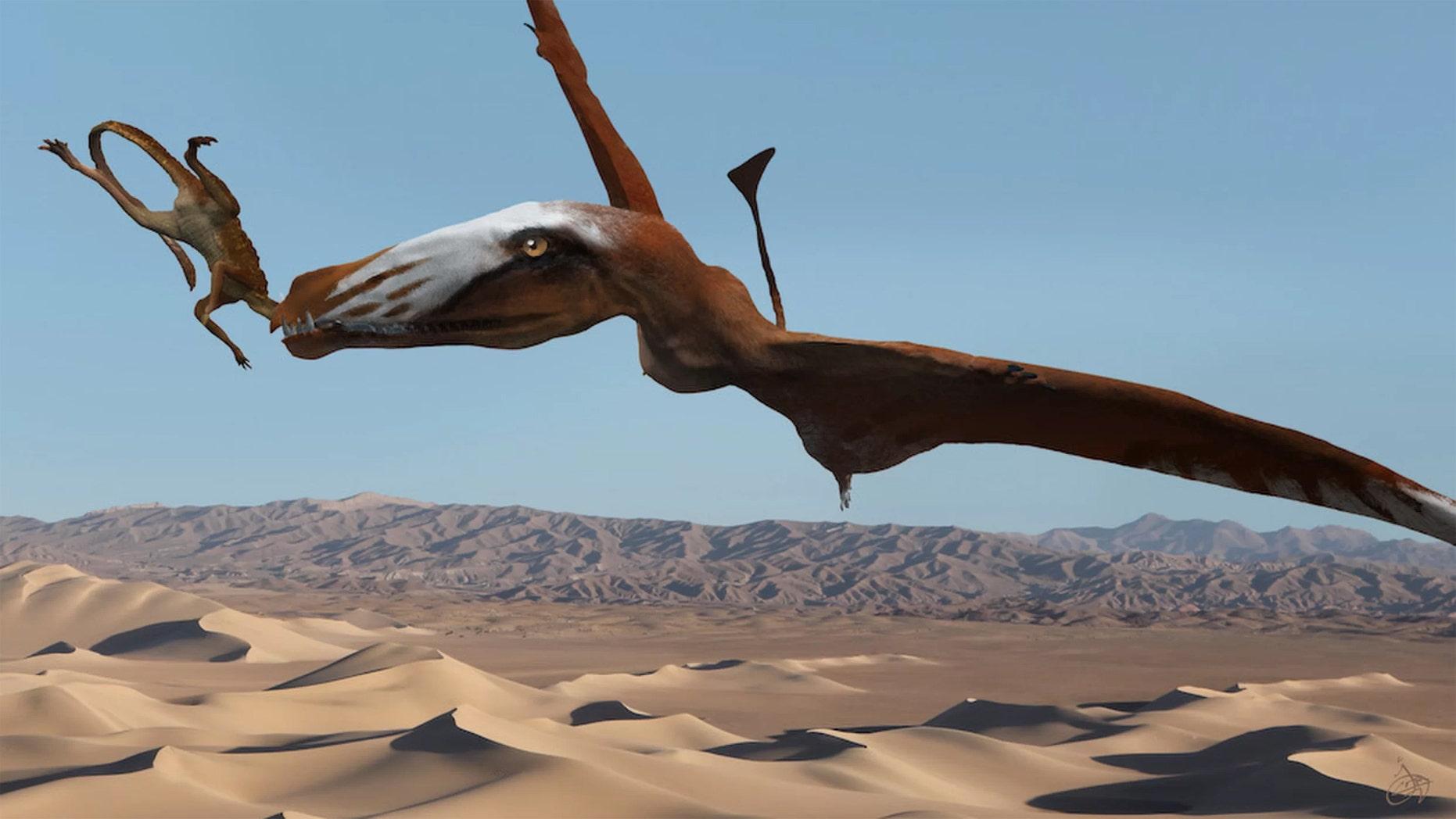 An artist's interpretation of the newfangled pterosaur snacking on a primitive crocodylomorph known as a sphenosuchian. Credit: Josh Cotton