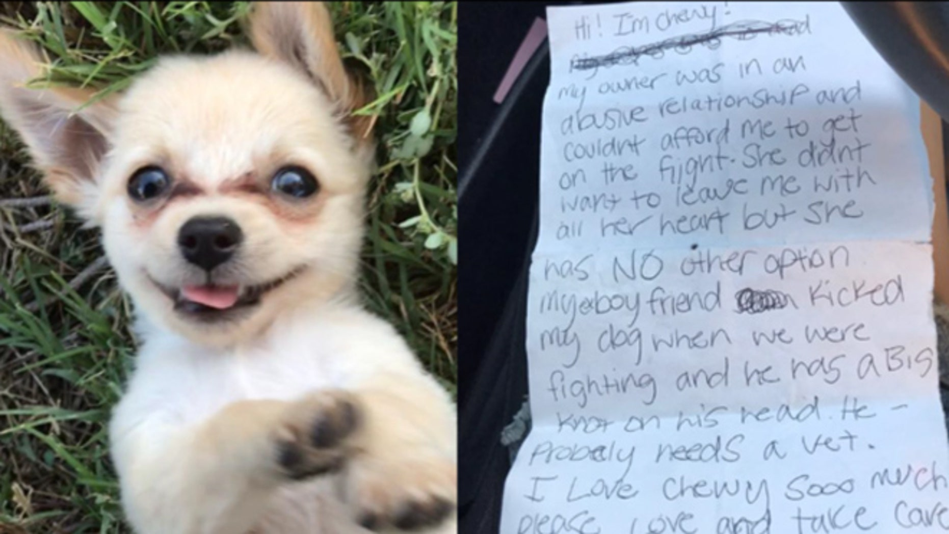 Three-month-old Chewy was abandoned in a Las Vegas Airport bathroom with a handwritten note.