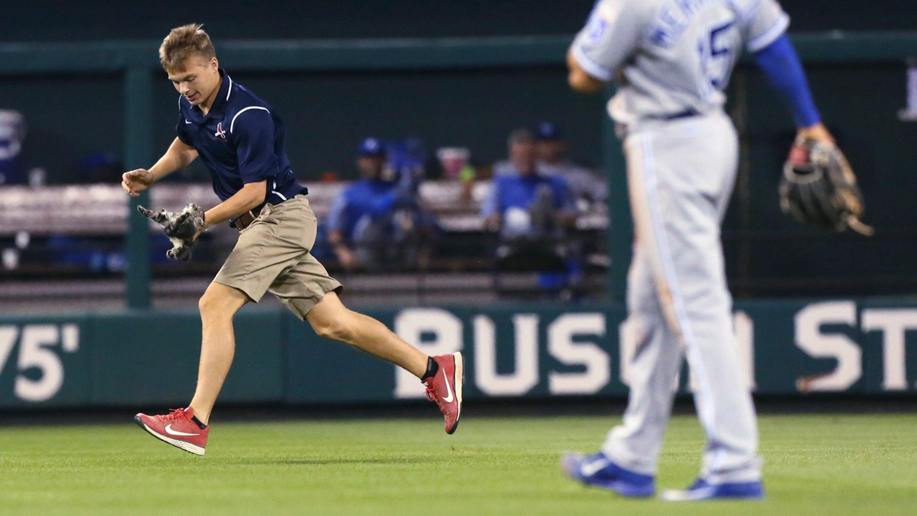 A Busch Stadium grounds crew members carries a small cat that had run across the outfield.