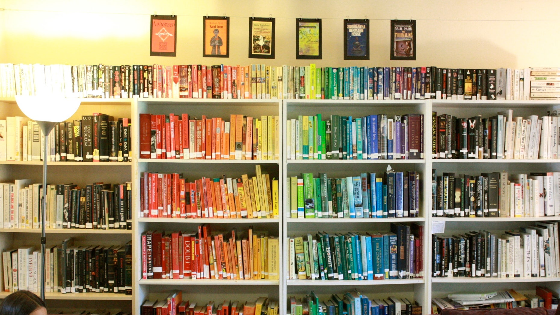 A girl reads in front of shelves of books sorted by color.