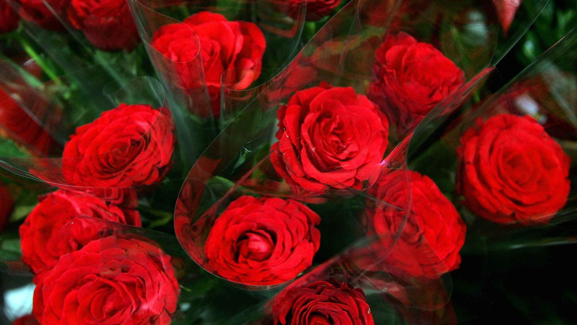 SYDNEY, AUSTRALIA - FEBRUARY 14:  Red roses are seen on display at a florist on Valentine's Day, February 14, 2008 in Sydney, Australia. The day is named after two of 11 officially recognised Early Christian martyrs named Valentine, namely Valentine of Rome and Valentine of Terni, and has been associated with love and romance since Chaucer's 1382 writings in 'Parlement of Foules' to honour the first anniversary of the engagement of King Richard II of England to Anne of Bohemia.  (Photo by Sergio Dionisio/Getty Images)