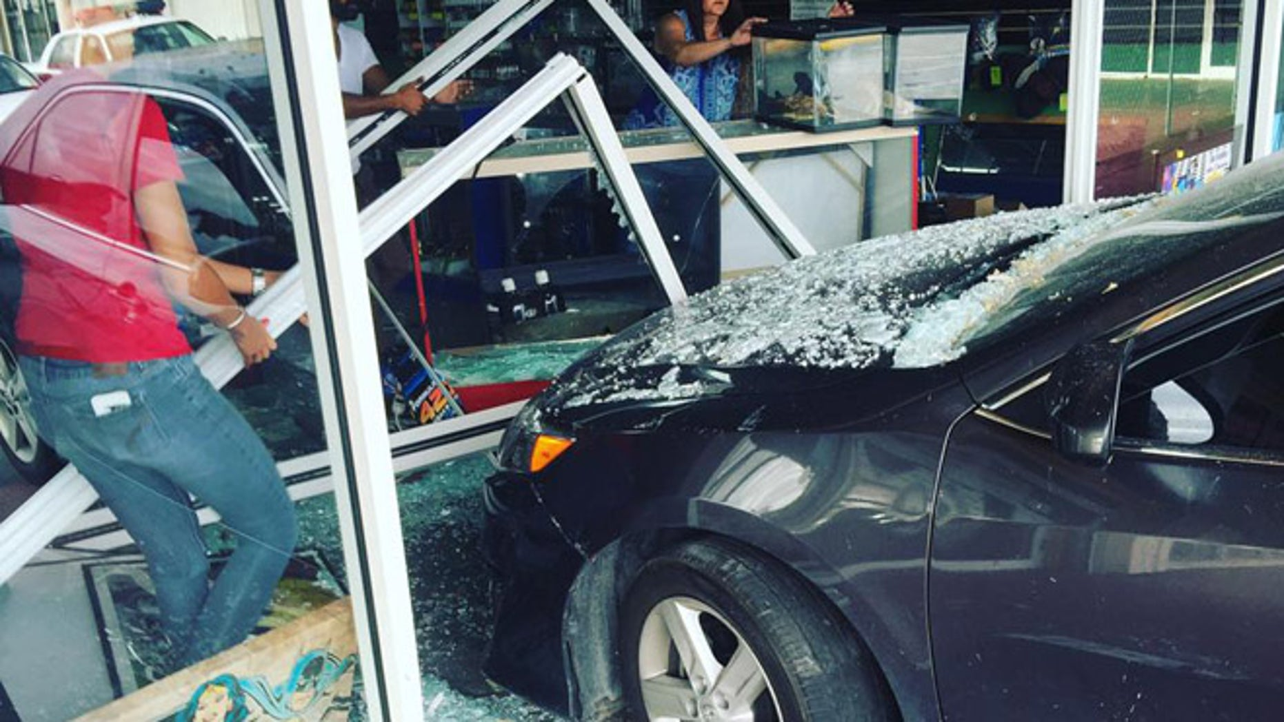 A car crashed Wednesday into a shop in Hialeah, Florida, that sells reptiles. (Subhan Malik)