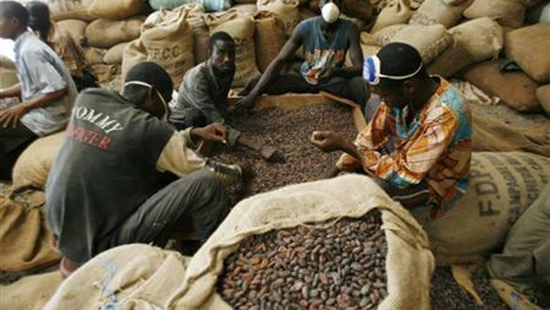 Men grade cocoa beans in a warehouse in Gonate, western Ivory Coast.
