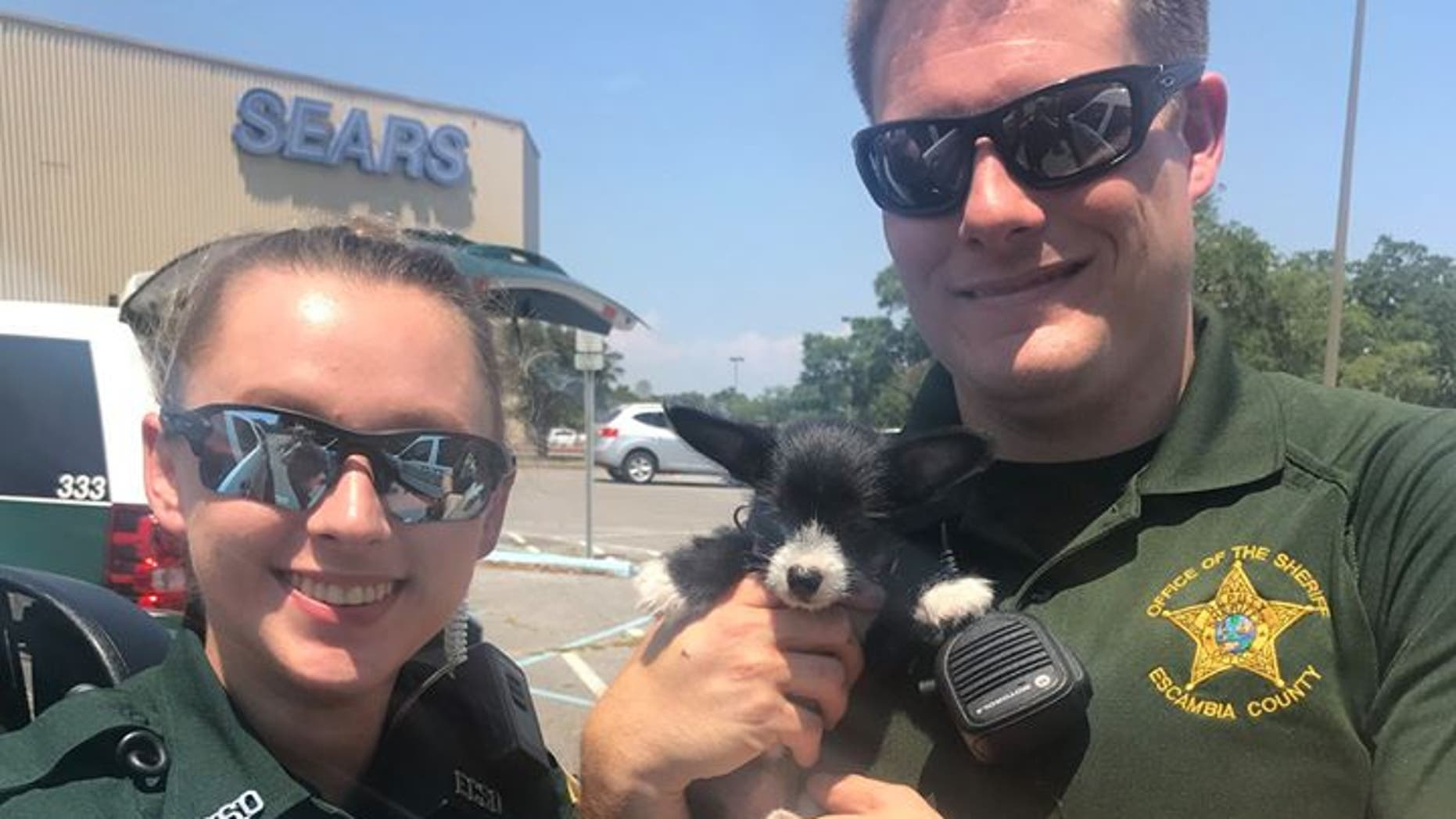 The deputy and deputy trainee rescued the puppy from the hot car on Saturday.