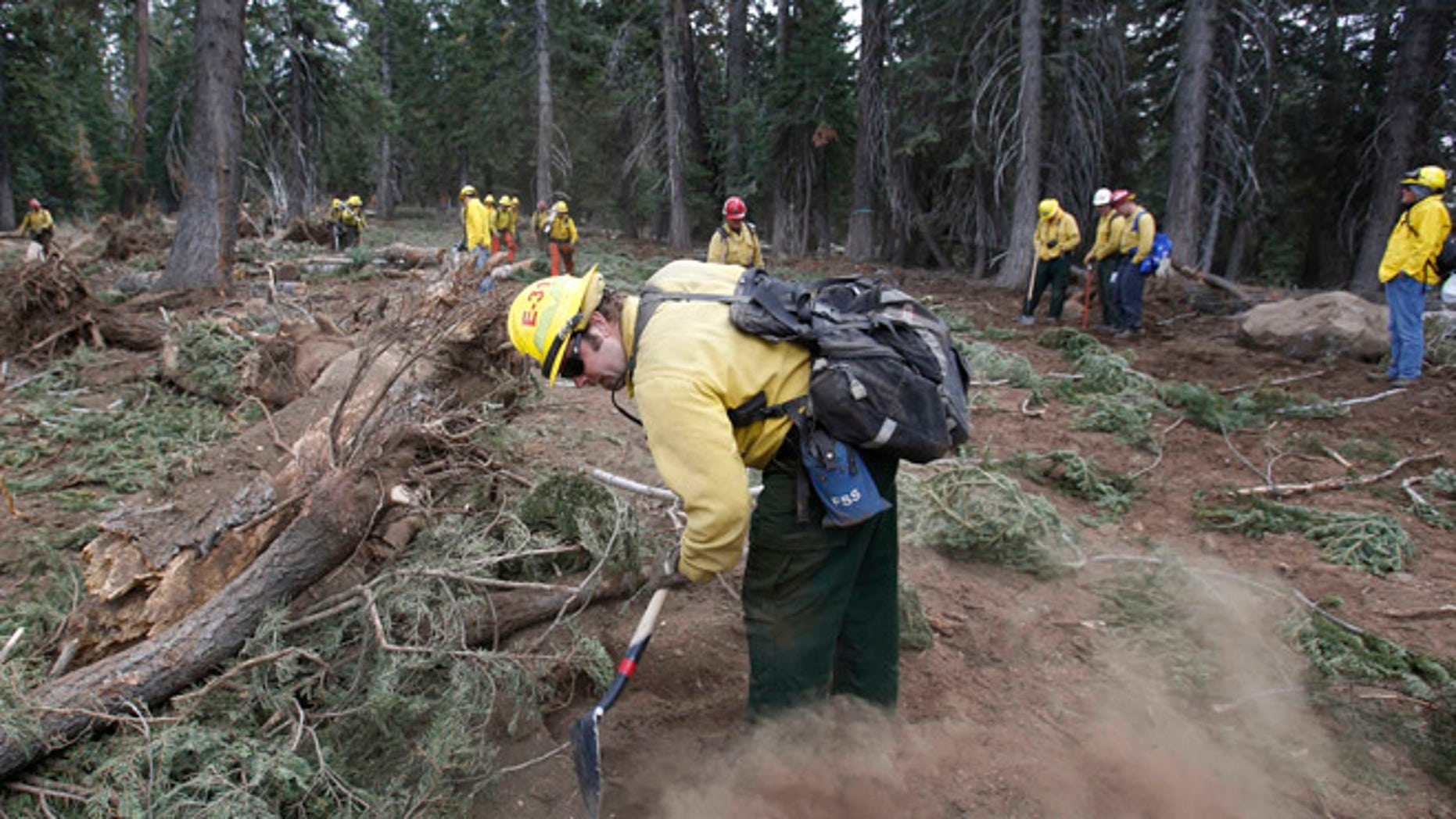 Sept. 25, 2013: Scott Small, and other National Forest Service crew members work to restore terrain that was bulldozed for a firebreak in the battle against Rim Fire on a nordic ski trail along Dodge Ridge in the Stanislaus National Forest, near Tuolumne City, Calif. (AP)