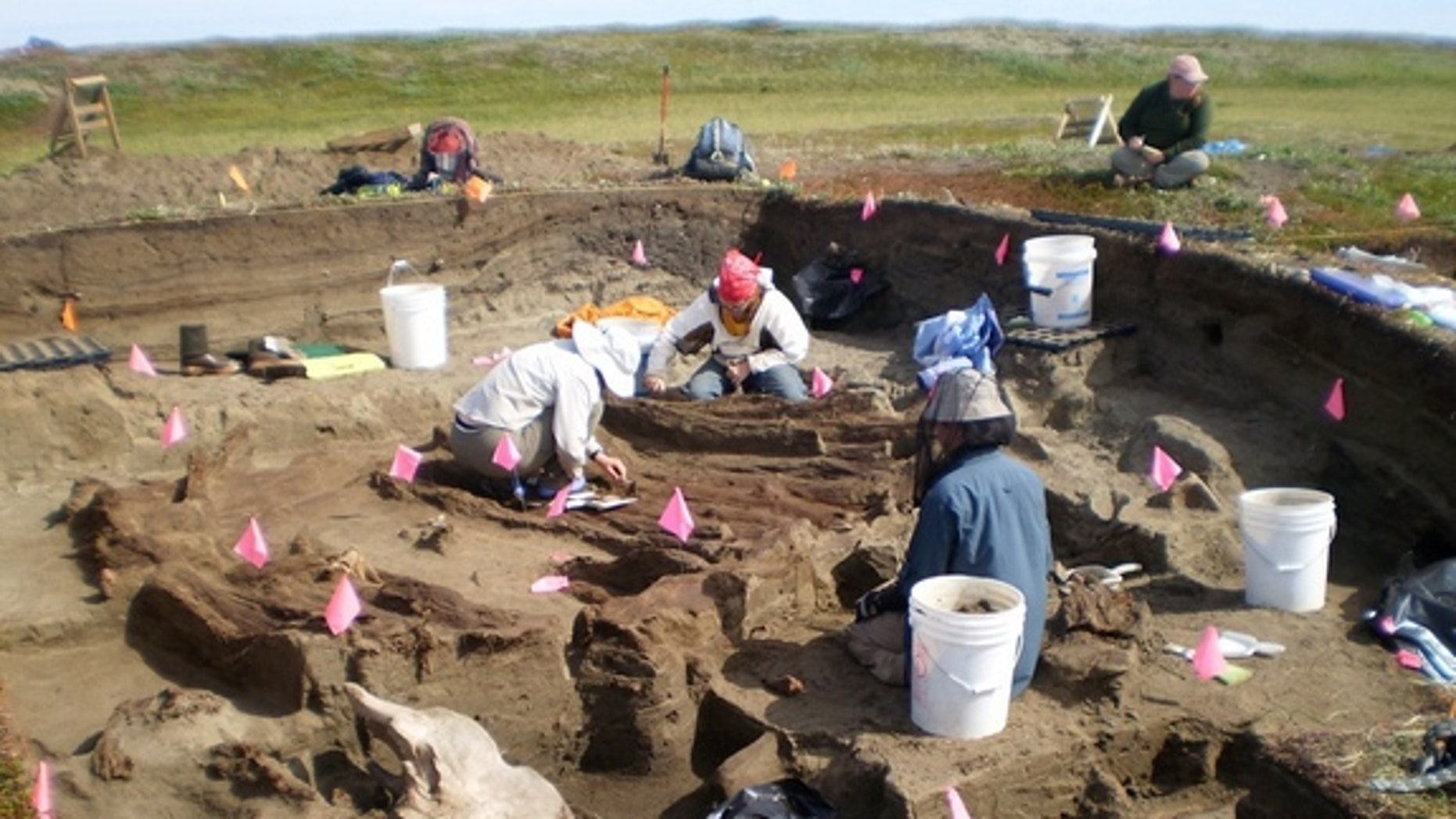 Archaeologists working at the Rising Whale site at Cape Espenberg, Alaska,  have discovered several artifacts that were imported from East Asia.