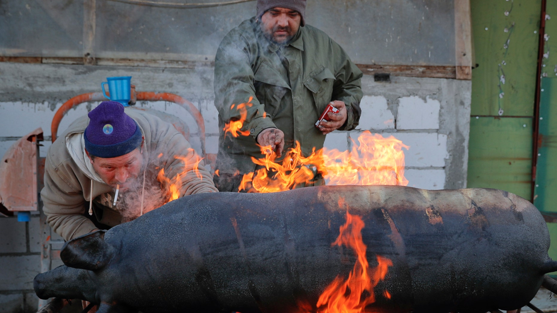 In this Dec. 8, 2016 picture a man uses a gas burner to clean the skin of a freshly slaughtered pig of hair in Dambu, Romania.