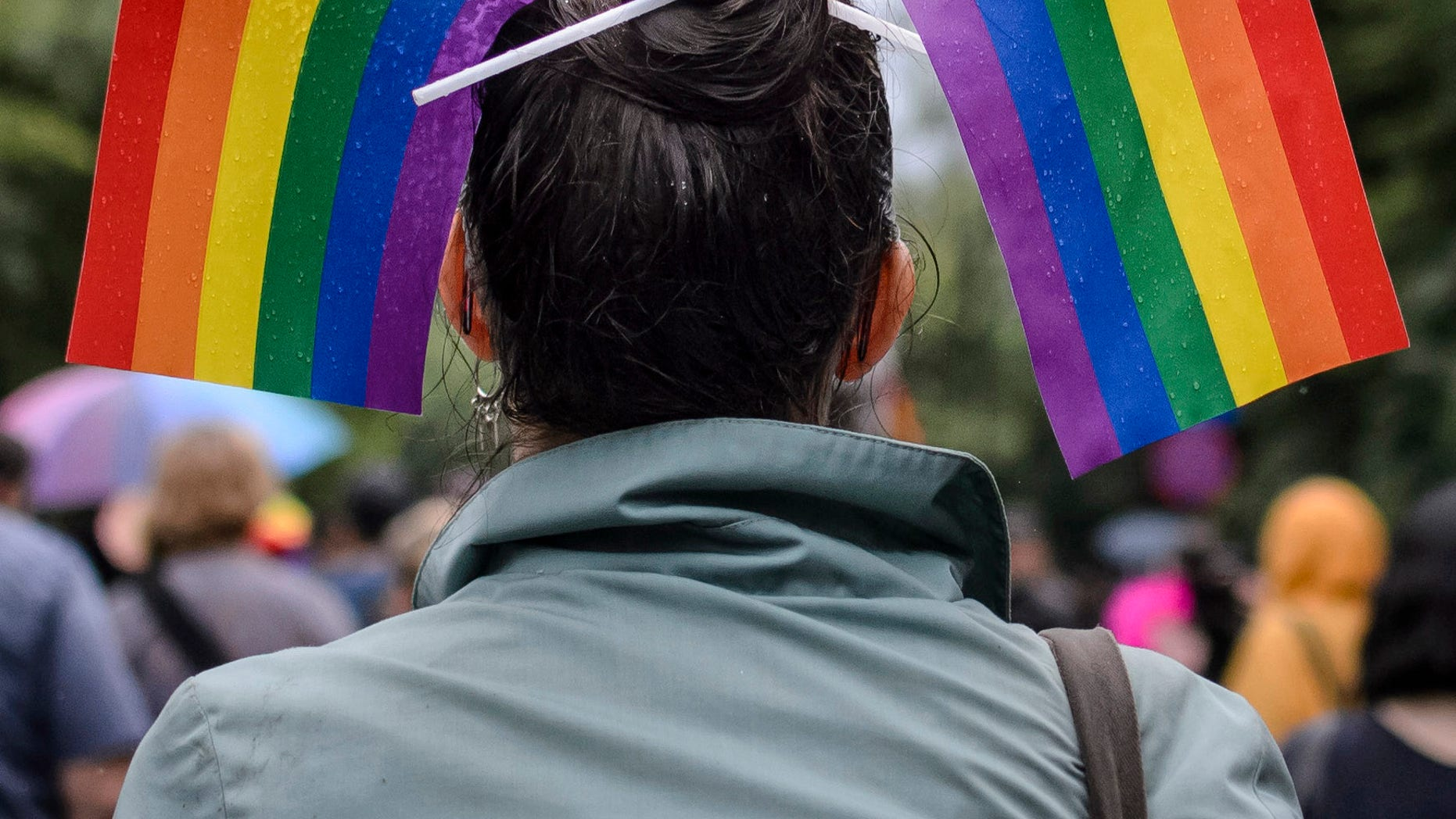 A woman with rainbow colored flags in her hair waits for the start of a gay pride parade in Bucharest, Romania, Saturday, May 20, 2017. Some 1,000 people have joined a gay pride march in the Romanian capital of Bucharest on Saturday, demanding greater rights amid government moves they say will curtail their human rights. (AP Photo/Andreea Alexandru)