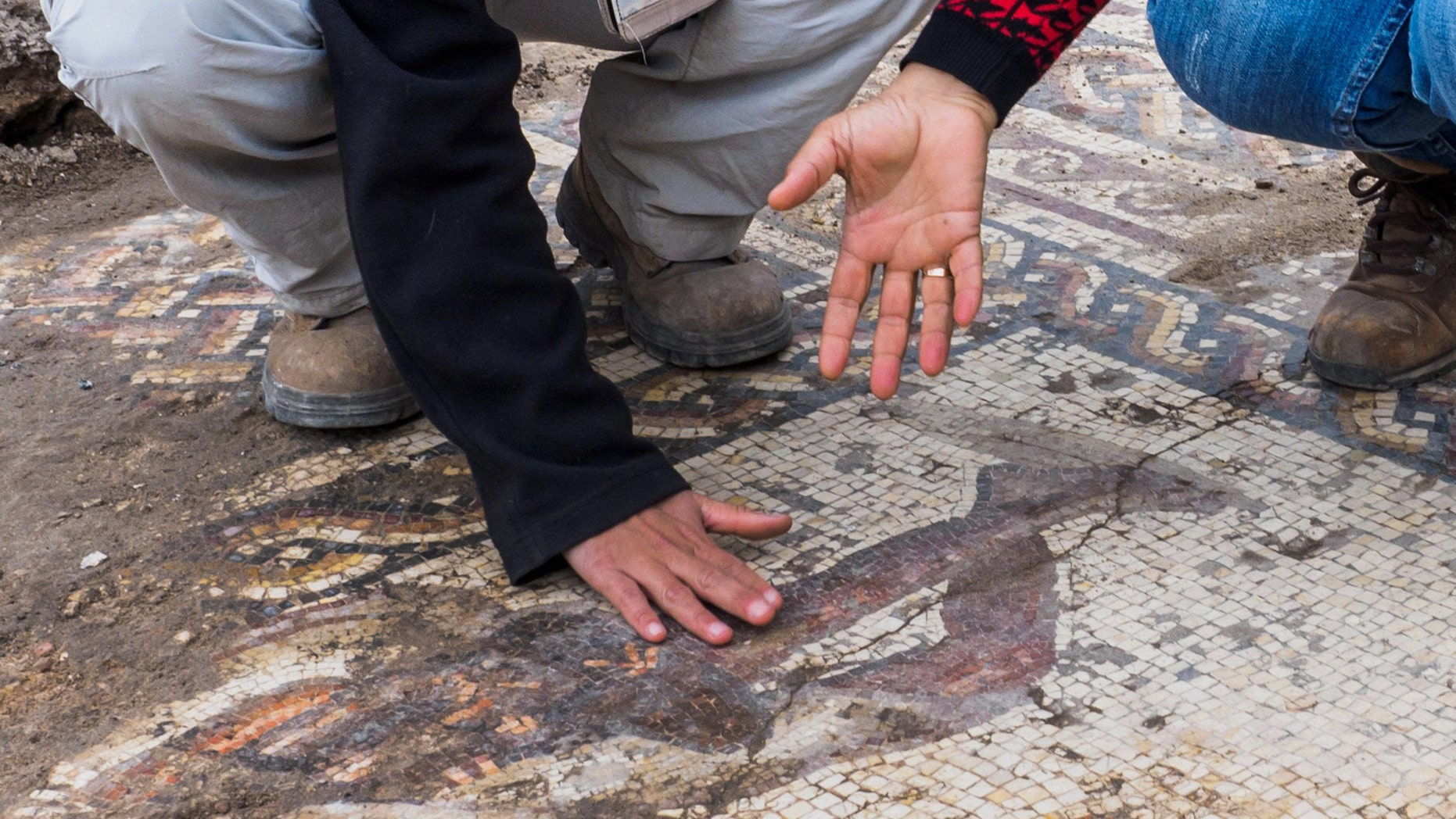 Archaeologists examine the Roman mosaic discovered in the ancient city of Caesarea (Photo: Assaf Peretz, Israel Antiquities Authority)