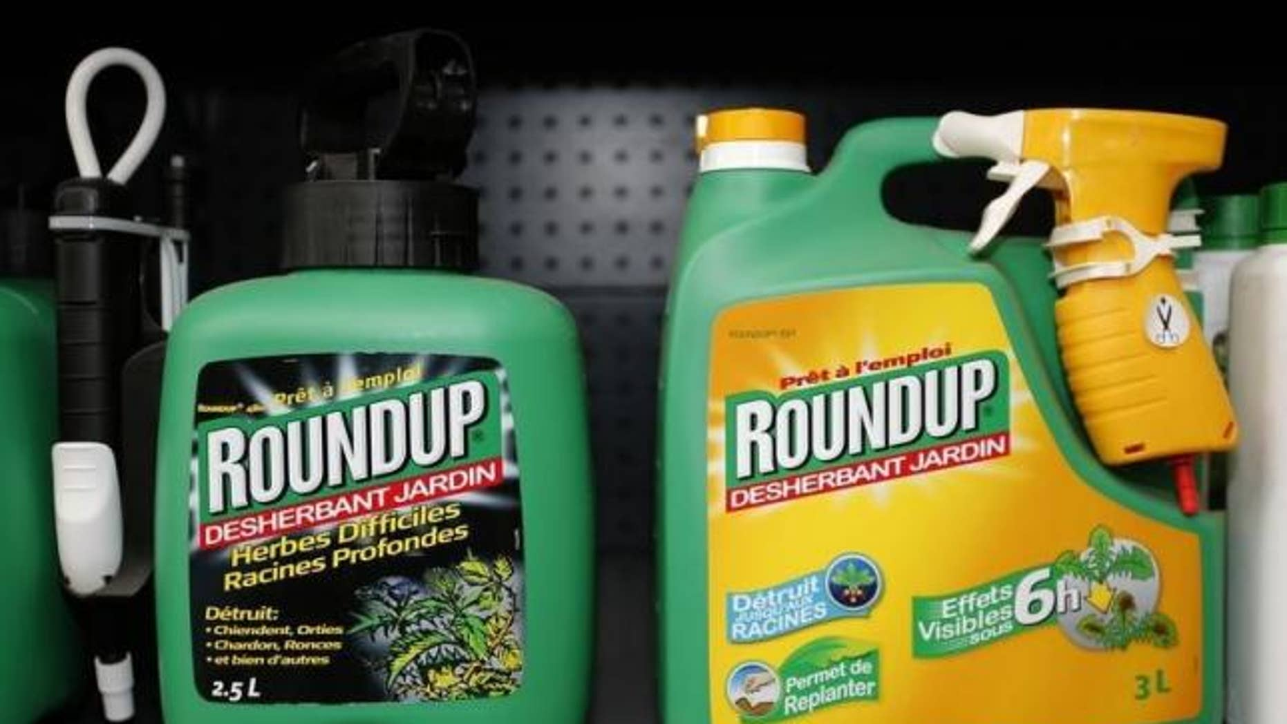 June 16, 2015: Monsanto's Roundup weedkiller atomizers are displayed for sale at a garden shop at Bonneuil-Sur-Marne near Paris, France.