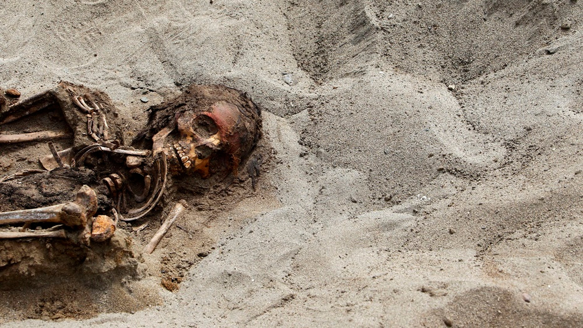 Archaeologists found the remains of 42 children and more than 70 young llamas in 2011, near Trujillo, Peru. By 2016 the number had grown to 140 children and 200 young llamas.