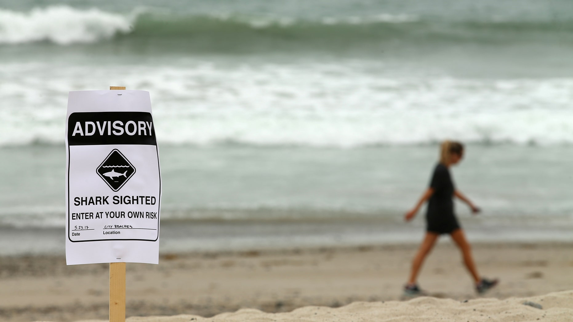Warning signs  placed along the beach to warn swimmers and surfers of recent shark sightings in San Clemente, California, last May.