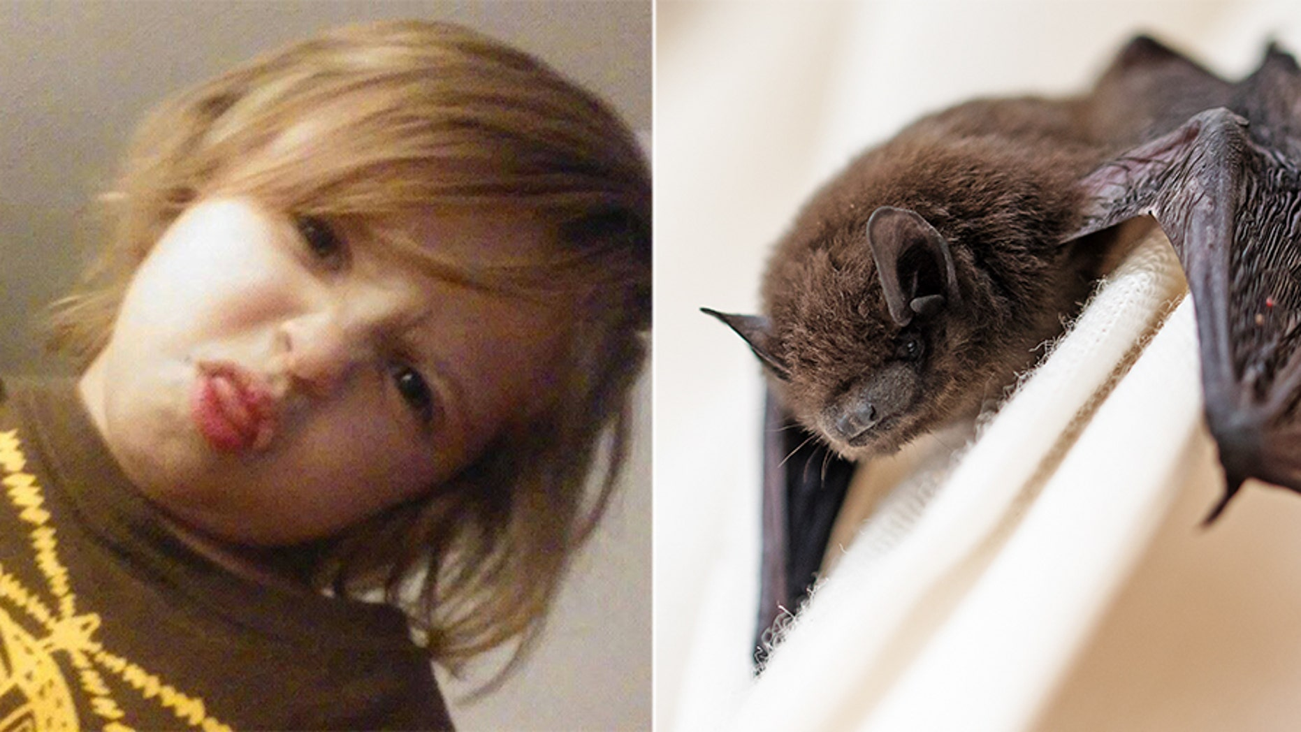 Ryker Roque, 6, died at a hospital in Orlando Sunday after contracting rabies from a sick bat.