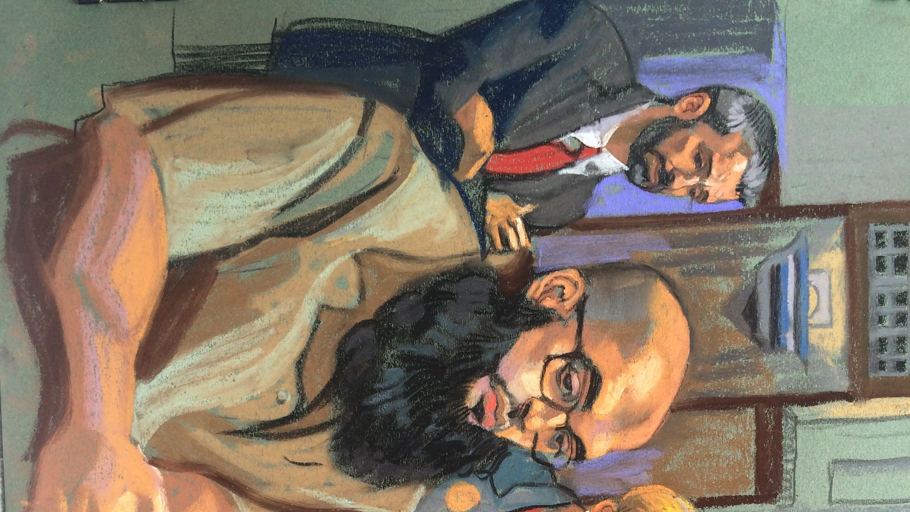 Alaa Saadeh in court.