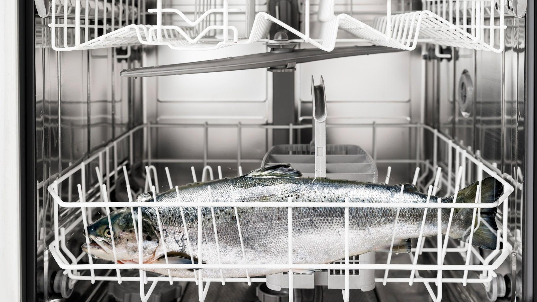 salmon in dishwasher