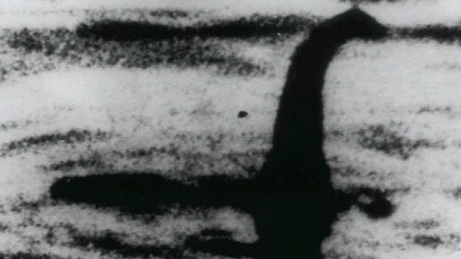 """FILE -This is an undated file photo of a shadowy shape that some people say is a photo of the Loch Ness monster in Scotland. For hundreds of years, visitors to Scotland's Loch Ness have described seeing a monster that some believe lives in the depths. Now the legend of """"Nessie"""" may have no place to hide. Researchers will travel there next month to take samples of the murky waters and use DNA tests to determine what species live there. (AP Photo, File)"""