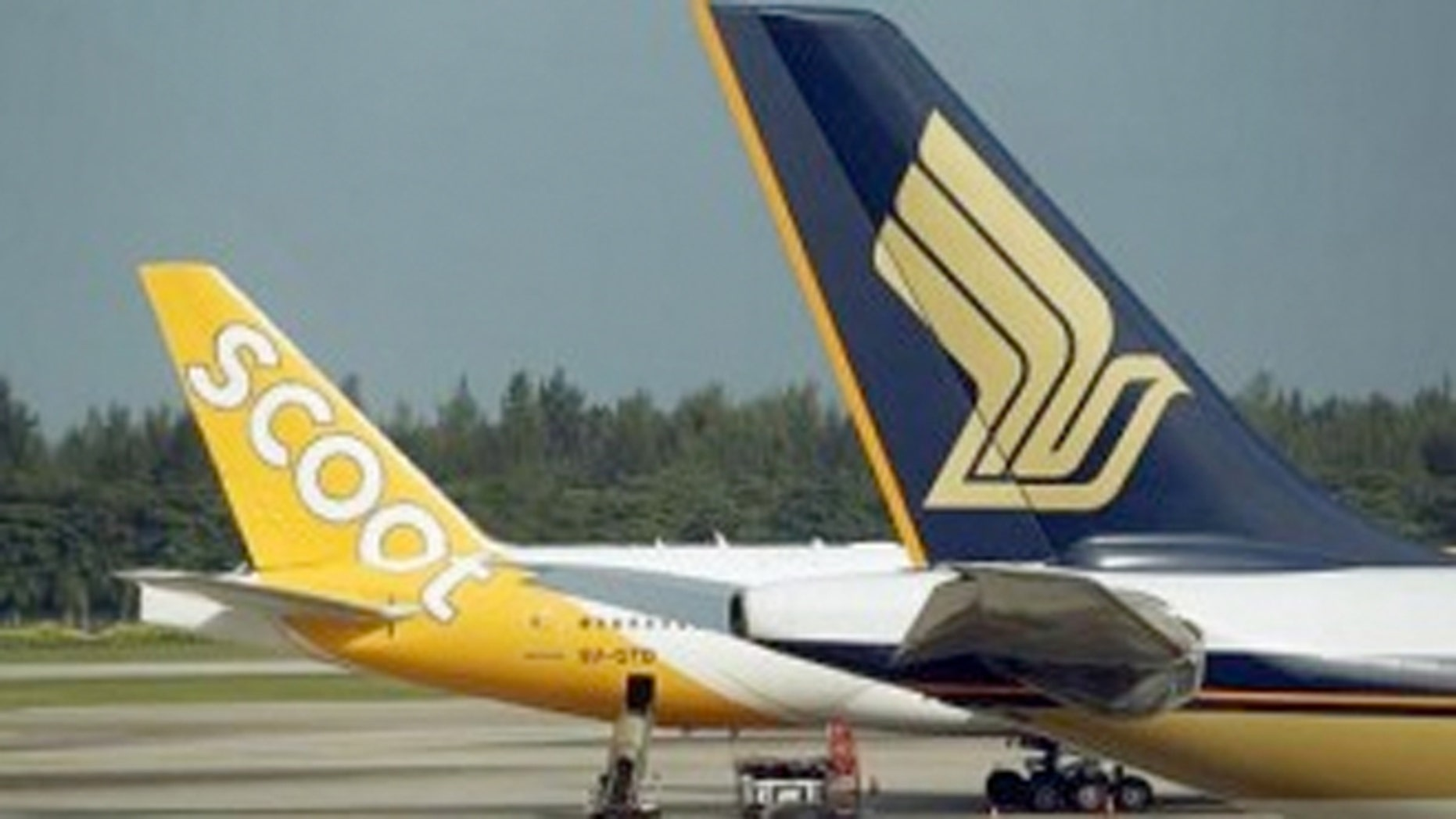 Scoot Airlines, a subsidiary of Singapore Airlines, is offering a child-free cabin for an extra $14.