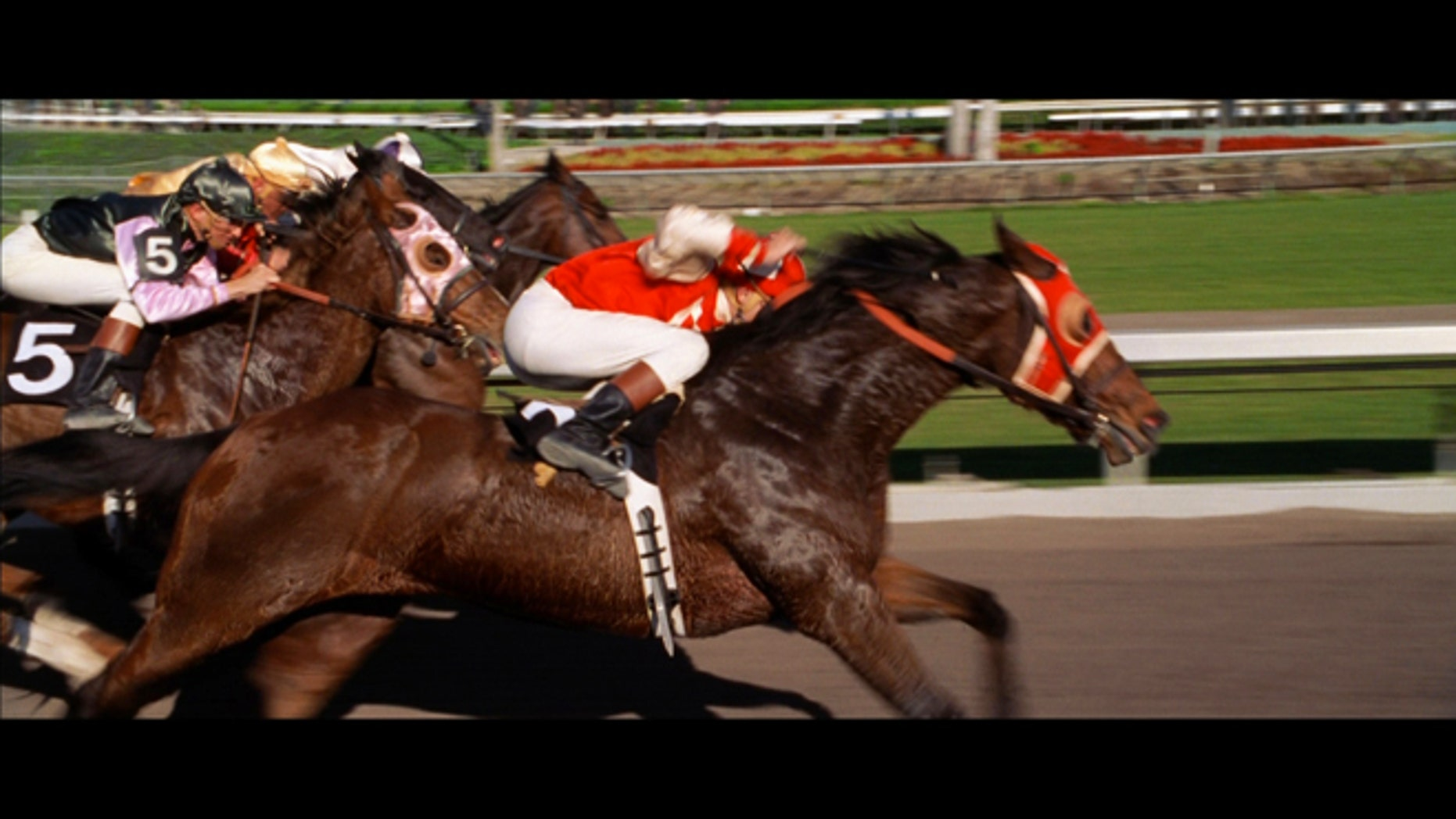 """A frame from the film """"Seabiscuit,"""" which tells the tale of the legendary racehorse."""