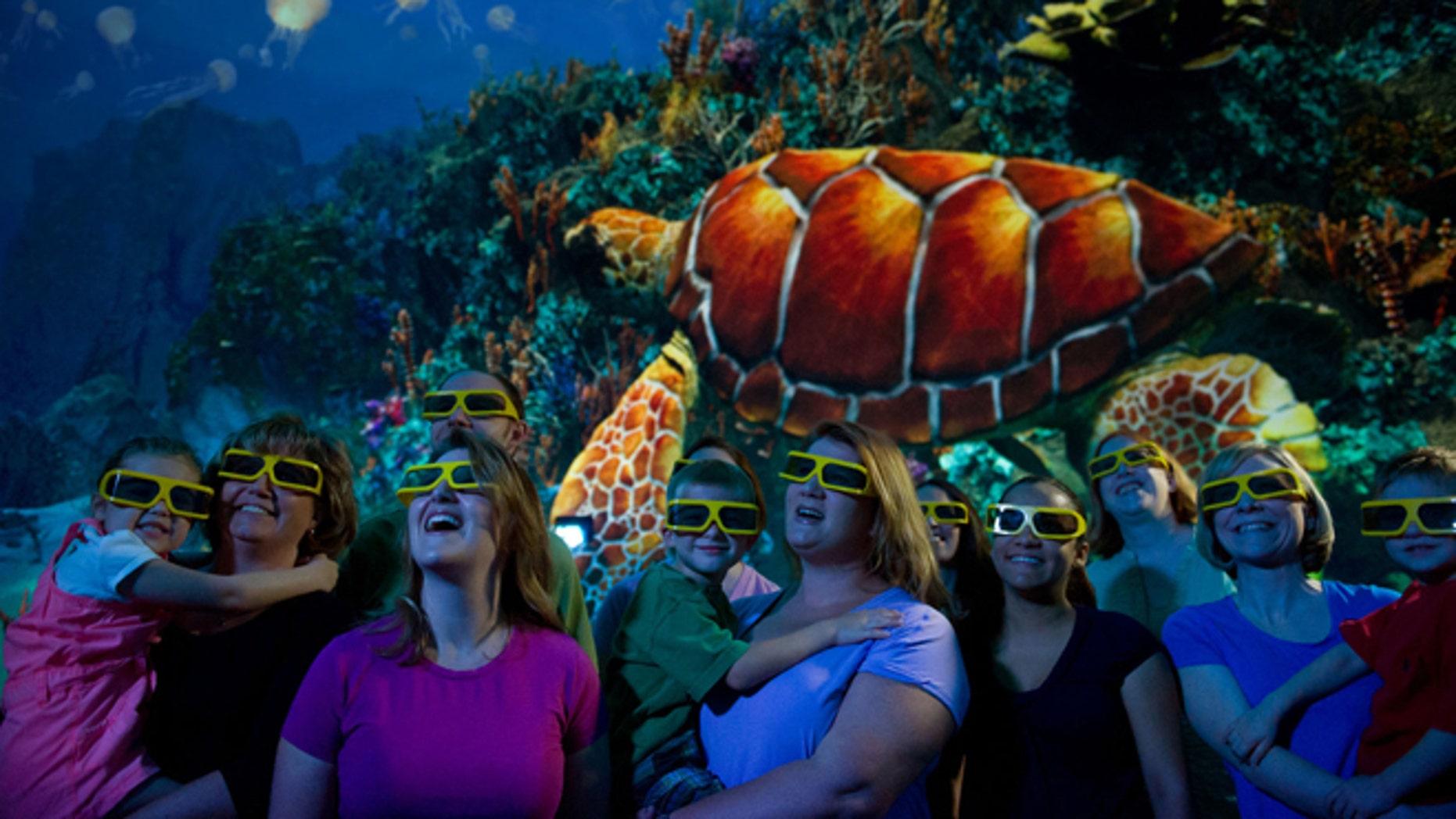 TurtleTrek, the 3-D movie.