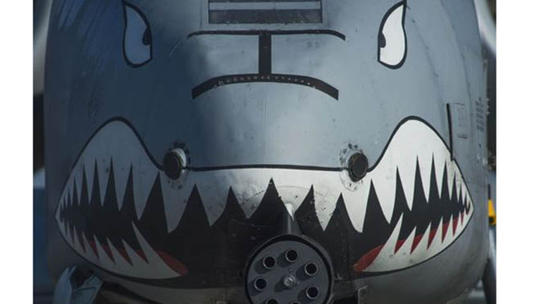 The nose of a U.S. Air Force A-10 Thunderbolt II displays a painted set of eyes and teeth over the aircraft's 30-mm. GAU-8 Avenger rotary cannon during the 74th Expeditionary Fighter Squadron's deployment in support of Operation Atlantic Resolve at Graf Ignatievo, Bulgaria, March 18, 2016. (U.S. Air Force)