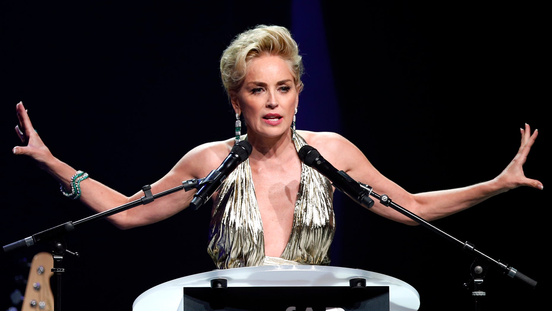 May 22, 2014. Sharon Stone attends an auction at the amfAR';s Cinema Against AIDS 2014 event in Antibes during the 67th Cannes Film Festival.
