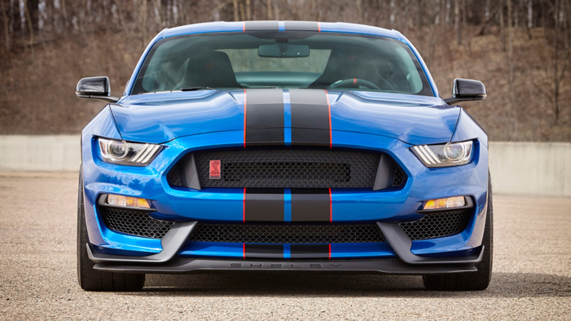 ford mustang shelby gt   burning rubber   fox news